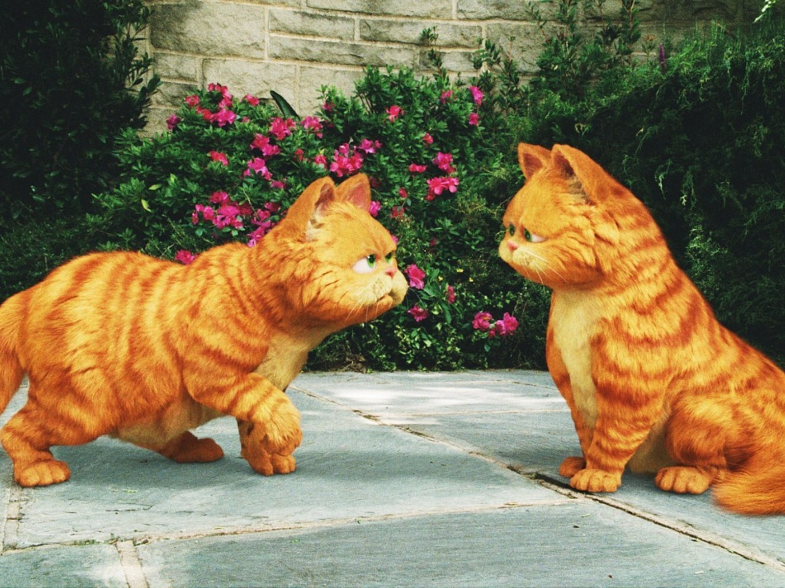 10321 download wallpaper Cartoon, Animals, Cats, Garfild screensavers and pictures for free