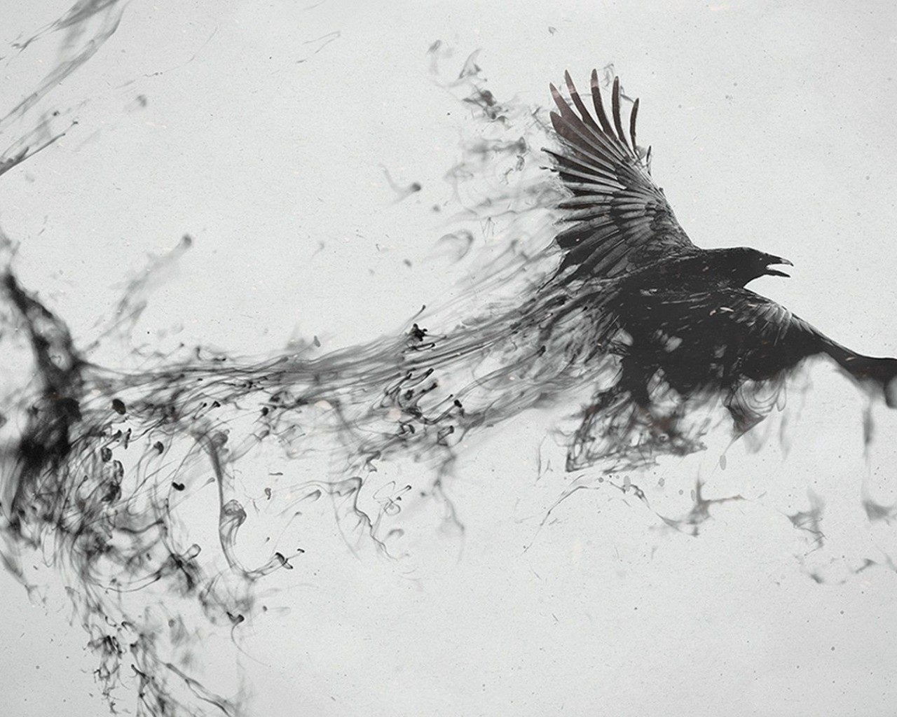 20988 download wallpaper Animals, Birds, Fantasy, Smoke, Crows screensavers and pictures for free