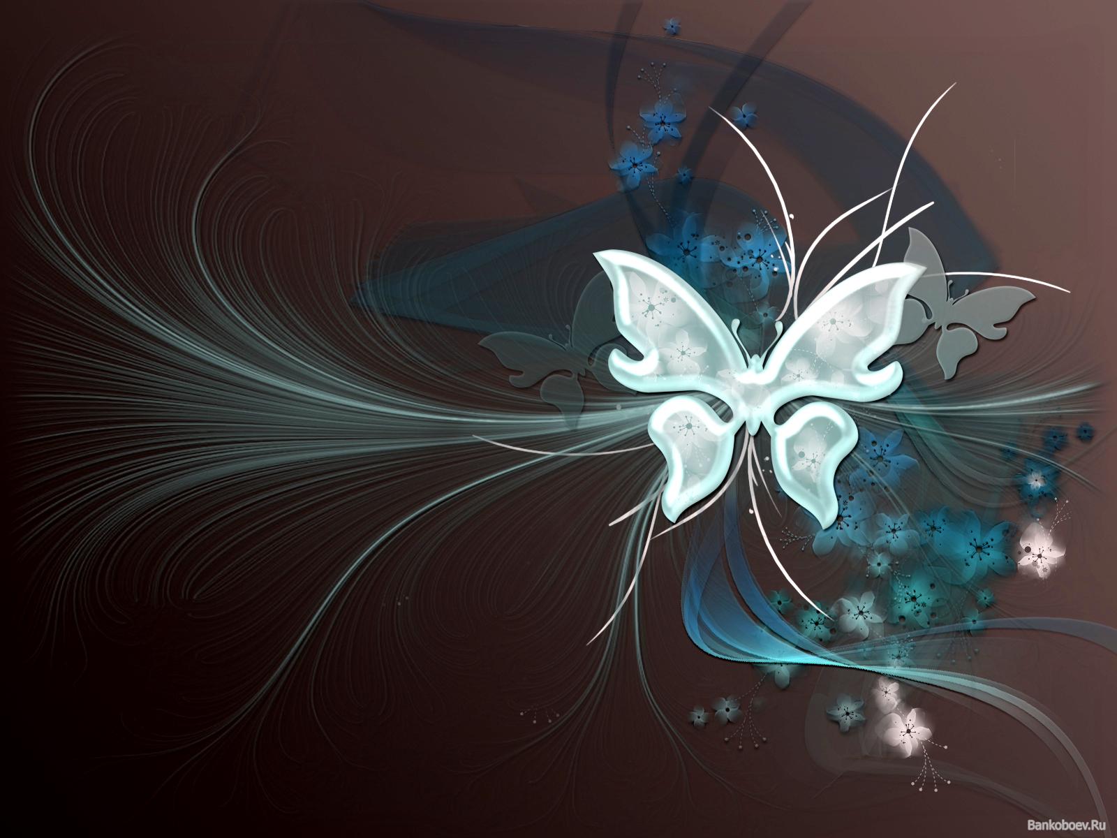 10671 Hintergrundbild herunterladen Schmetterlinge, Bilder - Bildschirmschoner und Bilder kostenlos