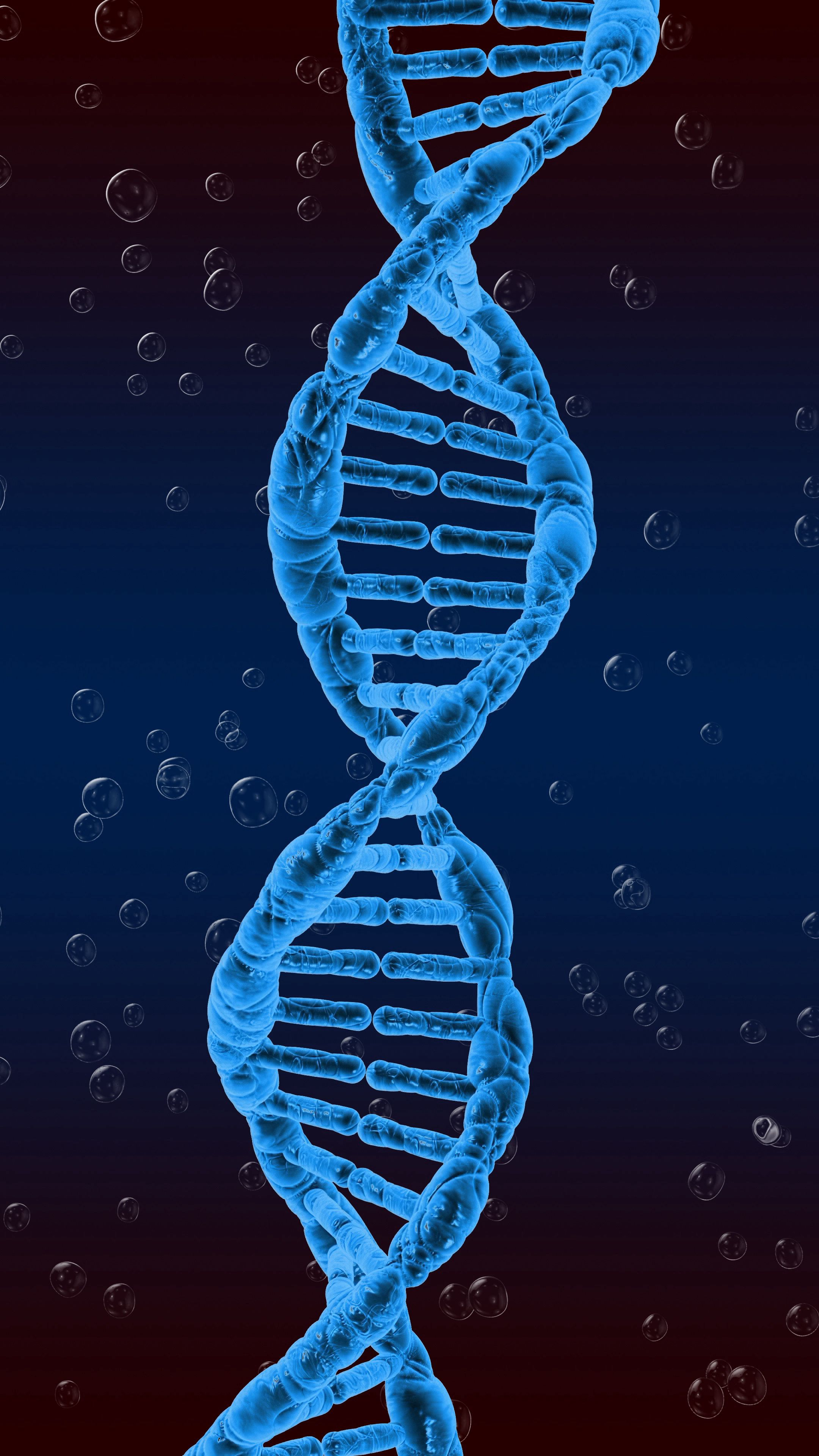 53277 завантажити шпалери 3D, Об'ємний Об'ємний, Спіраль, Закручений, Інволюція, Днк, Генетики, Генетика - заставки і картинки безкоштовно