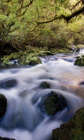 22011 скачать обои Пейзаж, Река, Деревья - заставки и картинки бесплатно