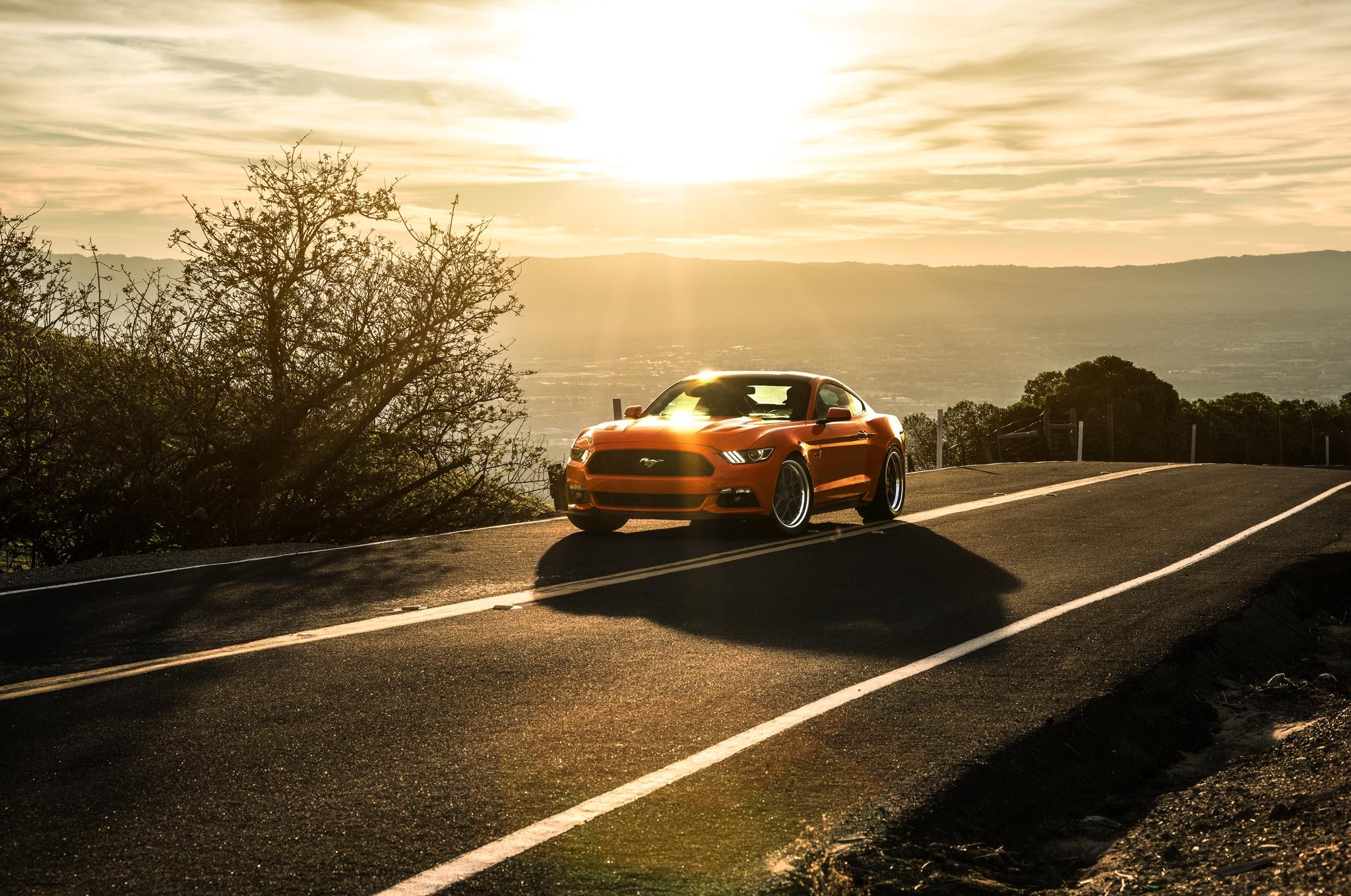 142837 Hintergrundbild herunterladen Ford, Mustang, Cars, Ford Mustang, 2015 - Bildschirmschoner und Bilder kostenlos