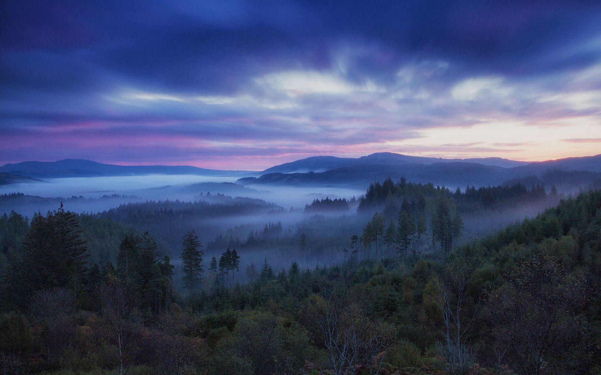 78136 скачать обои Природа, Деревья, Небо, Туман, Холмы, Шотландия - заставки и картинки бесплатно