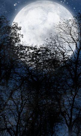 44745 télécharger le fond d'écran Paysage, Nuit, Lune - économiseurs d'écran et images gratuitement