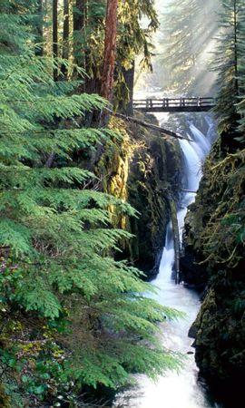 29018 скачать обои Пейзаж, Река, Мосты - заставки и картинки бесплатно