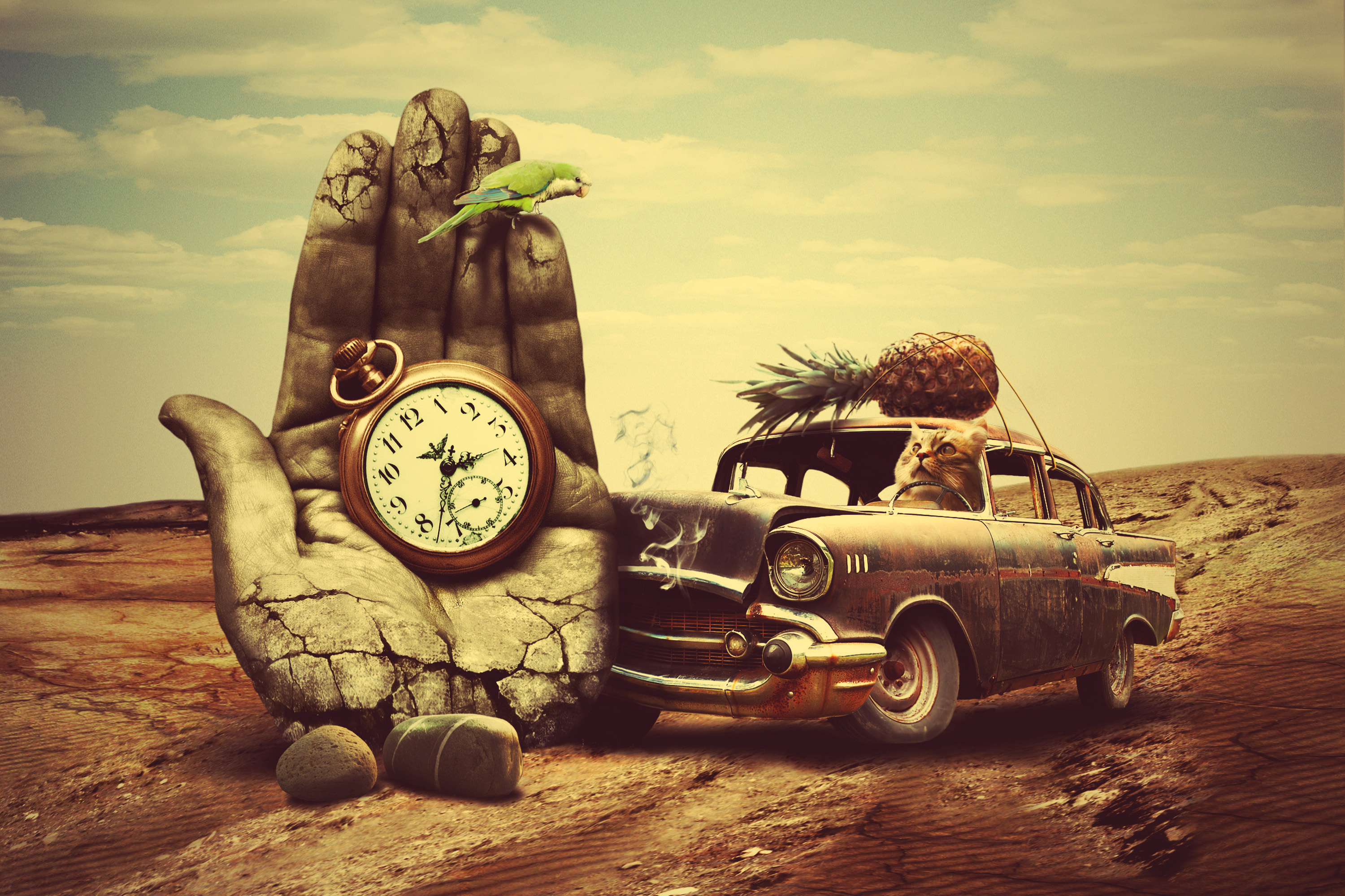81890 download wallpaper Art, Clock, Hand, Cat, Car, Creative, Surrealism, Pineapple screensavers and pictures for free
