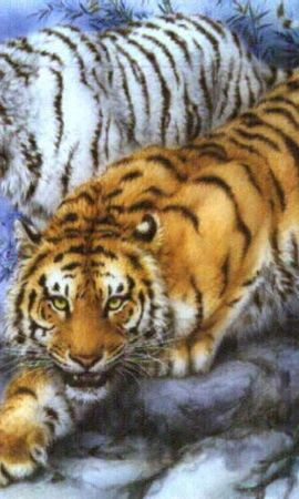 8278 download wallpaper Animals, Tigers, Pictures screensavers and pictures for free