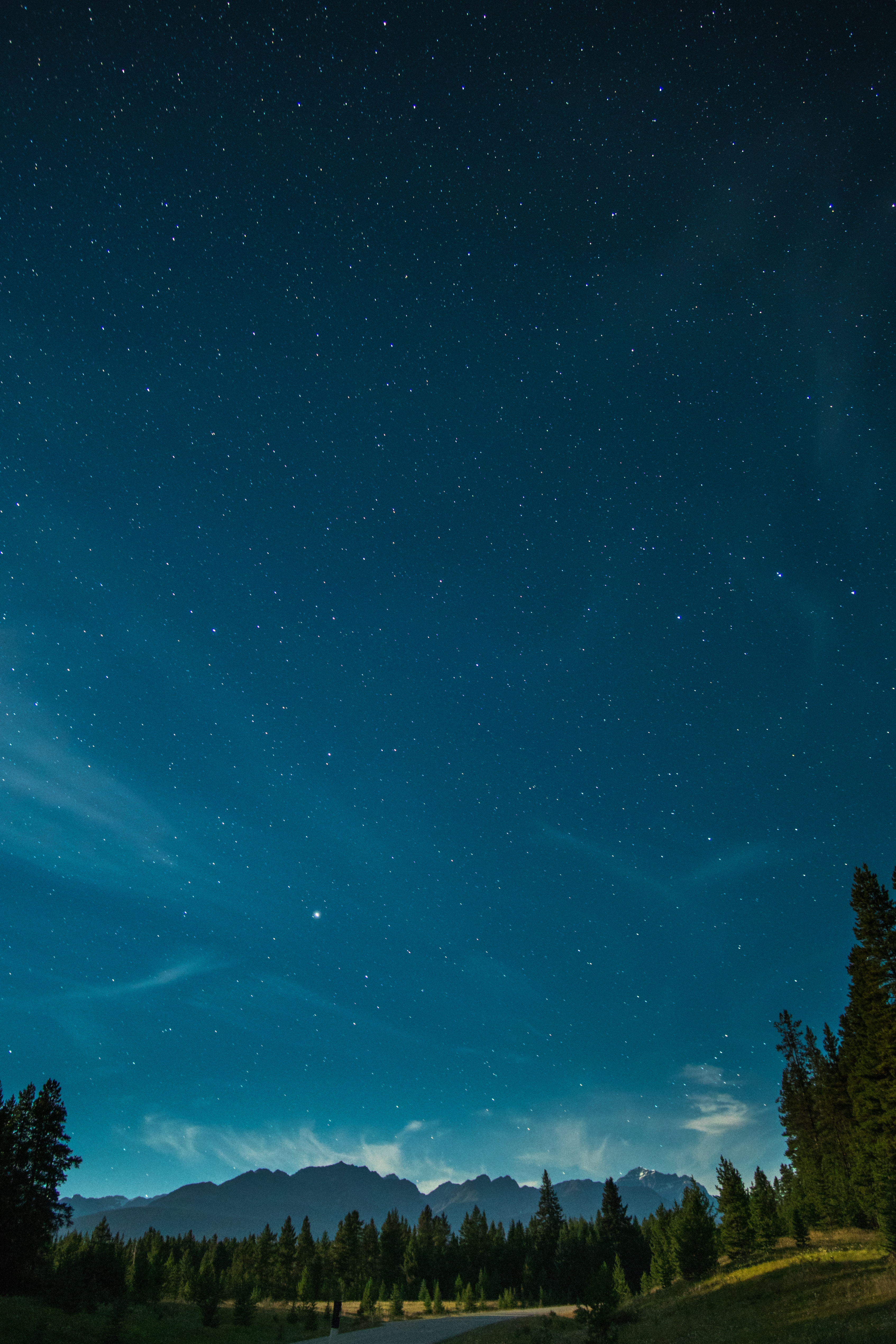 86958 download wallpaper Starry Sky, Nature, Trees, Mountains, Night screensavers and pictures for free