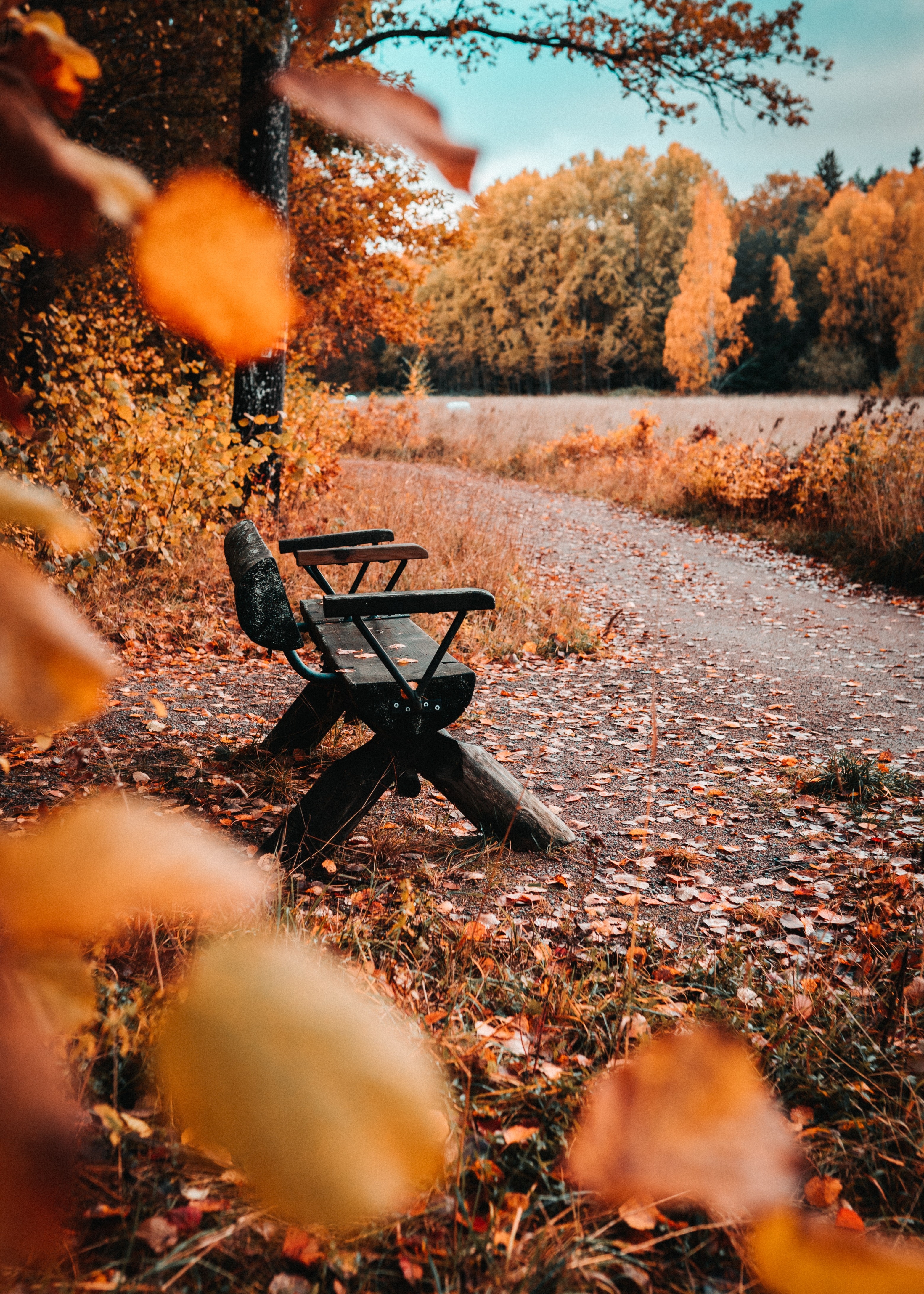 115066 Screensavers and Wallpapers Bench for phone. Download Nature, Autumn, Leaves, Foliage, Bench pictures for free
