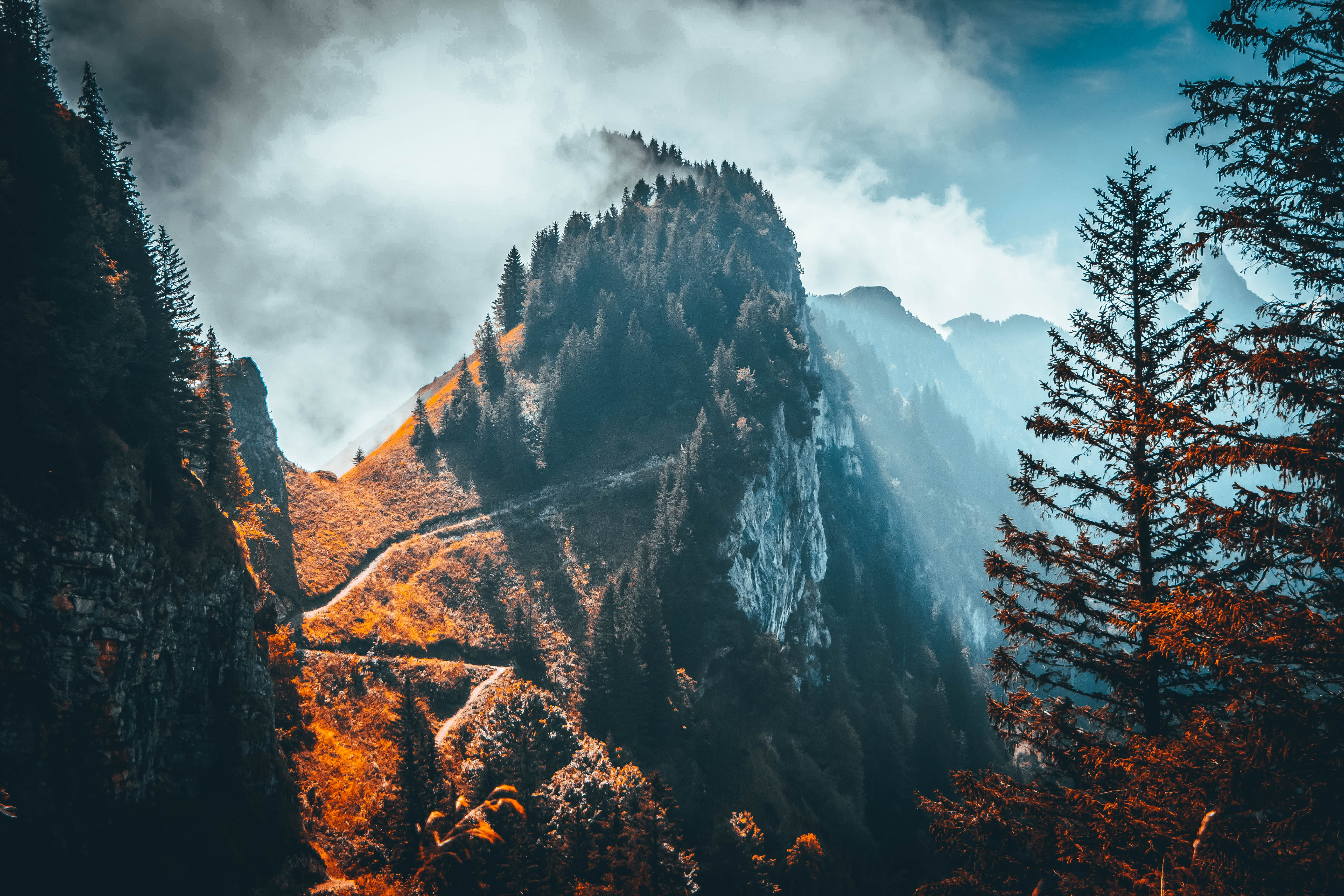 77739 free wallpaper 1080x2400 for phone, download images Landscape, Nature, Trees, Clouds, Rock, Mountain, Vertex, Top 1080x2400 for mobile