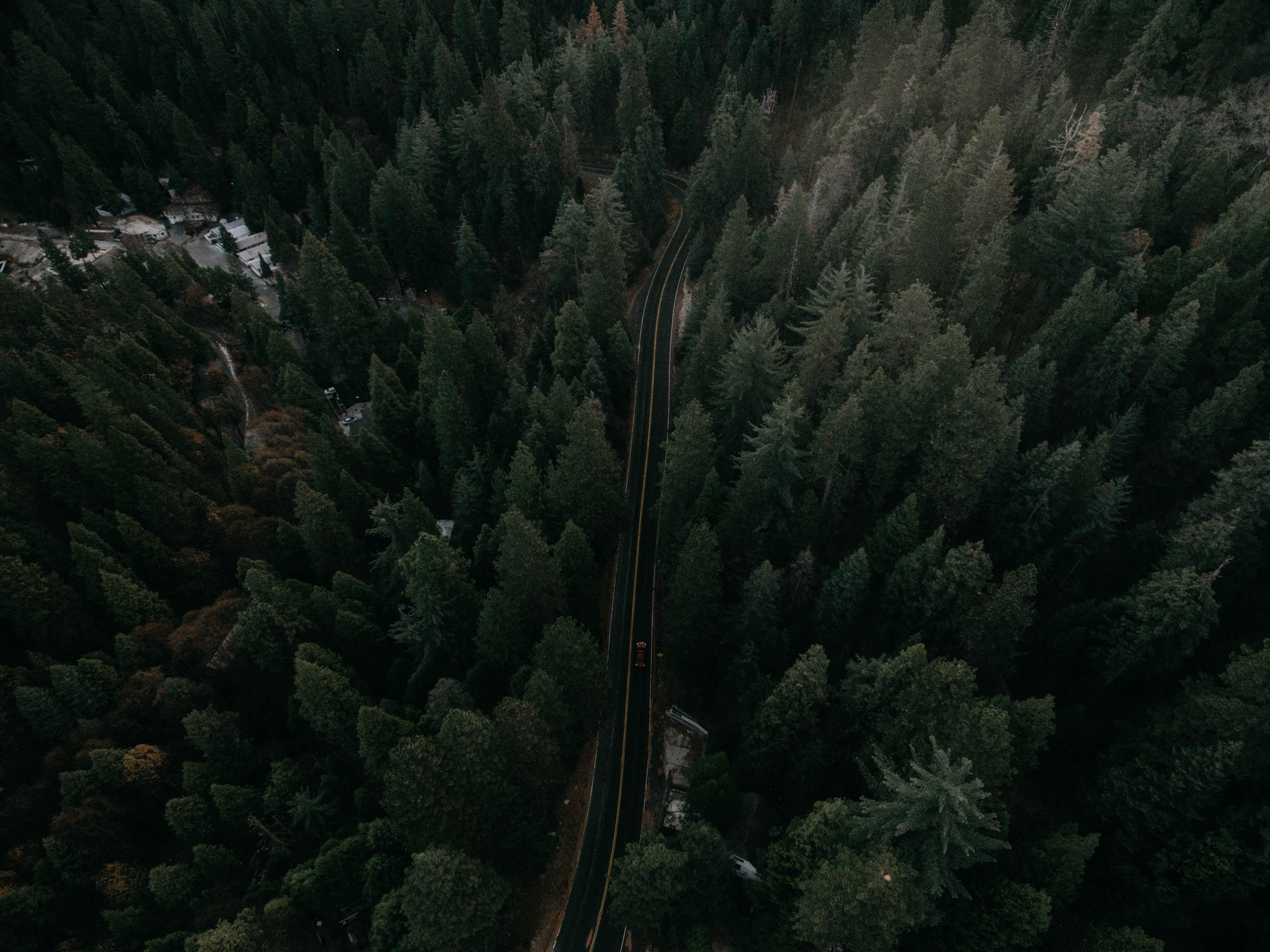 153458 скачать обои Природа, Дорога, Вид Сверху, Деревья, Разметка, Машины, Движение - заставки и картинки бесплатно