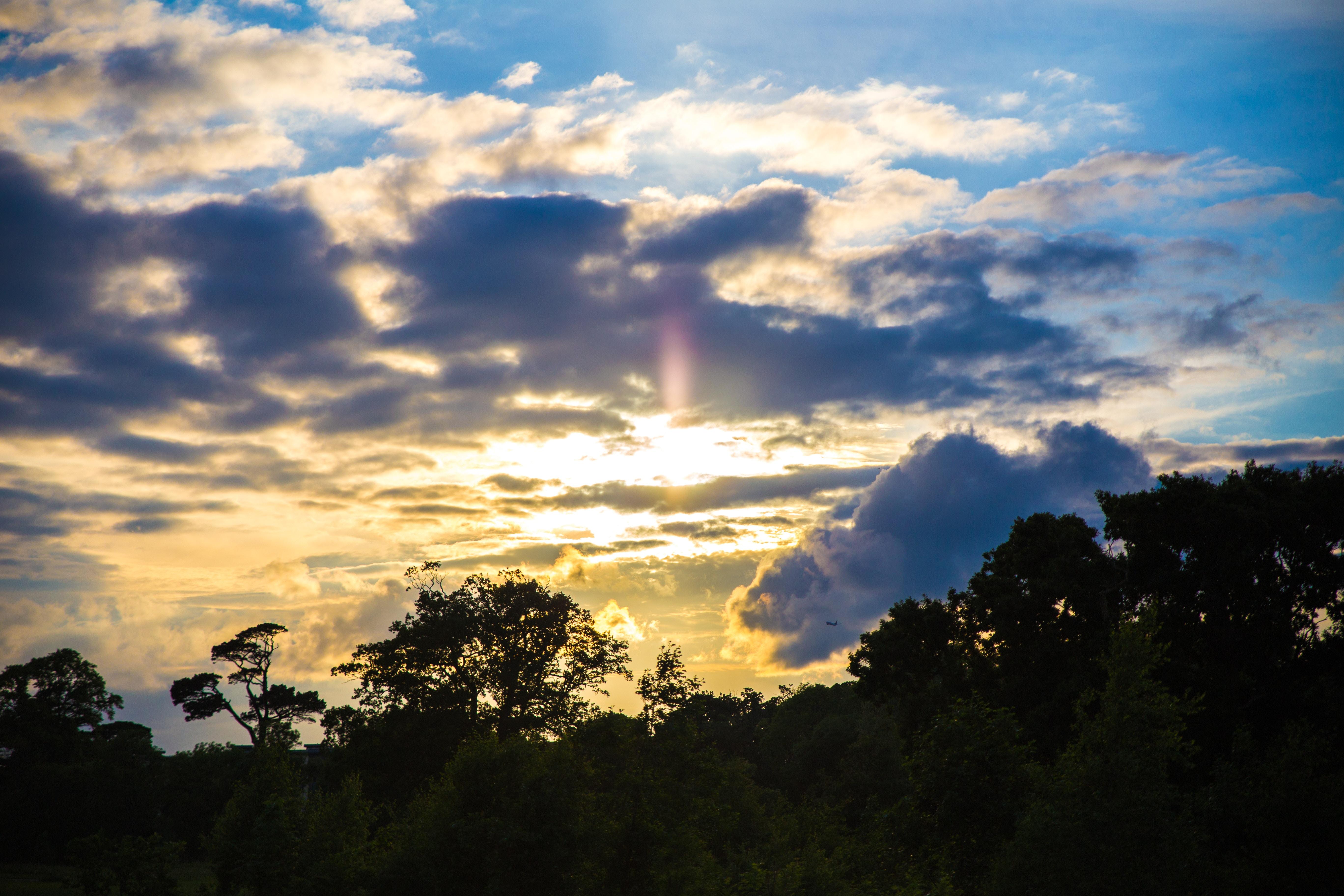 98966 скачать обои Природа, Деревья, Закат, Небо, Облака - заставки и картинки бесплатно