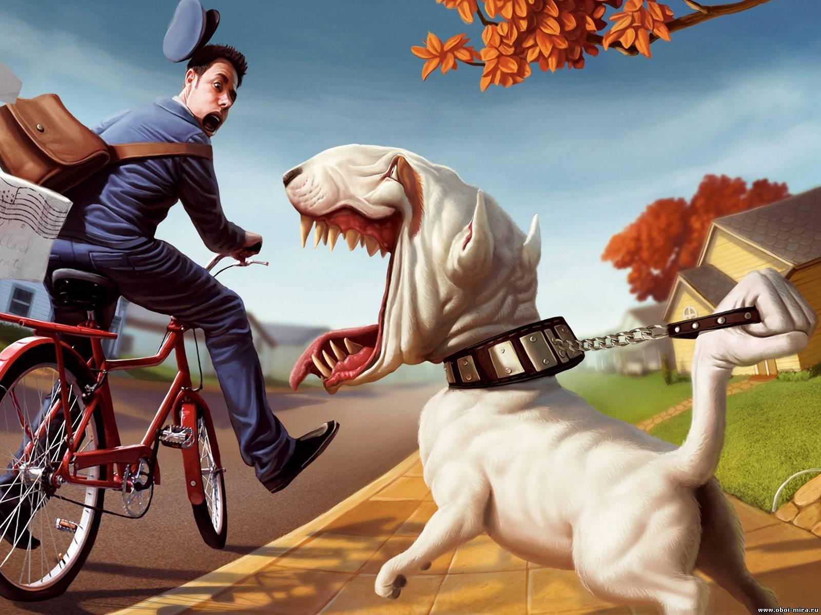 10650 скачать обои Юмор, Собаки, Рисунки - заставки и картинки бесплатно