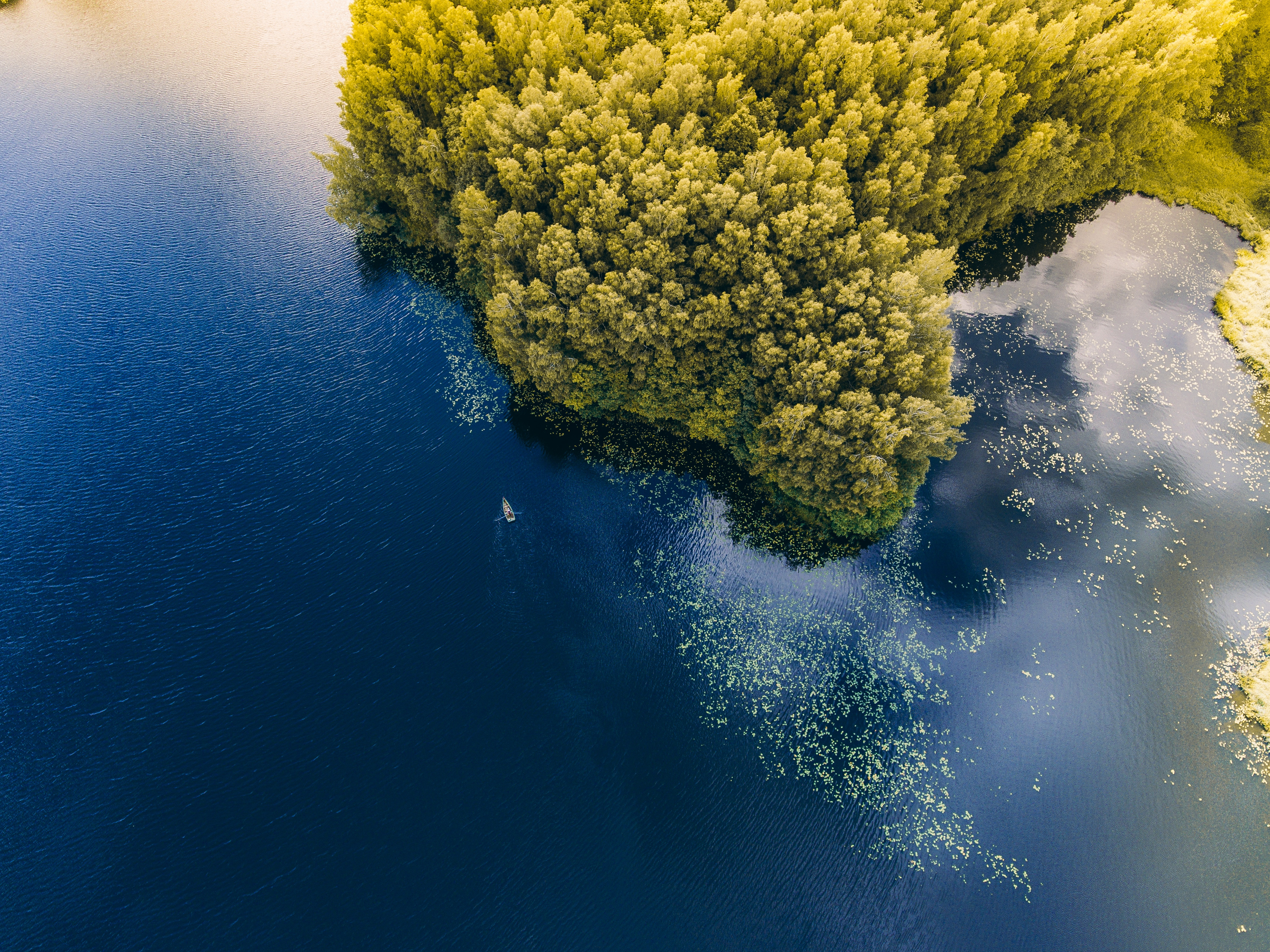 77140 Screensavers and Wallpapers Boat for phone. Download Nature, Trees, Sea, View From Above, Lithuania, Boat pictures for free