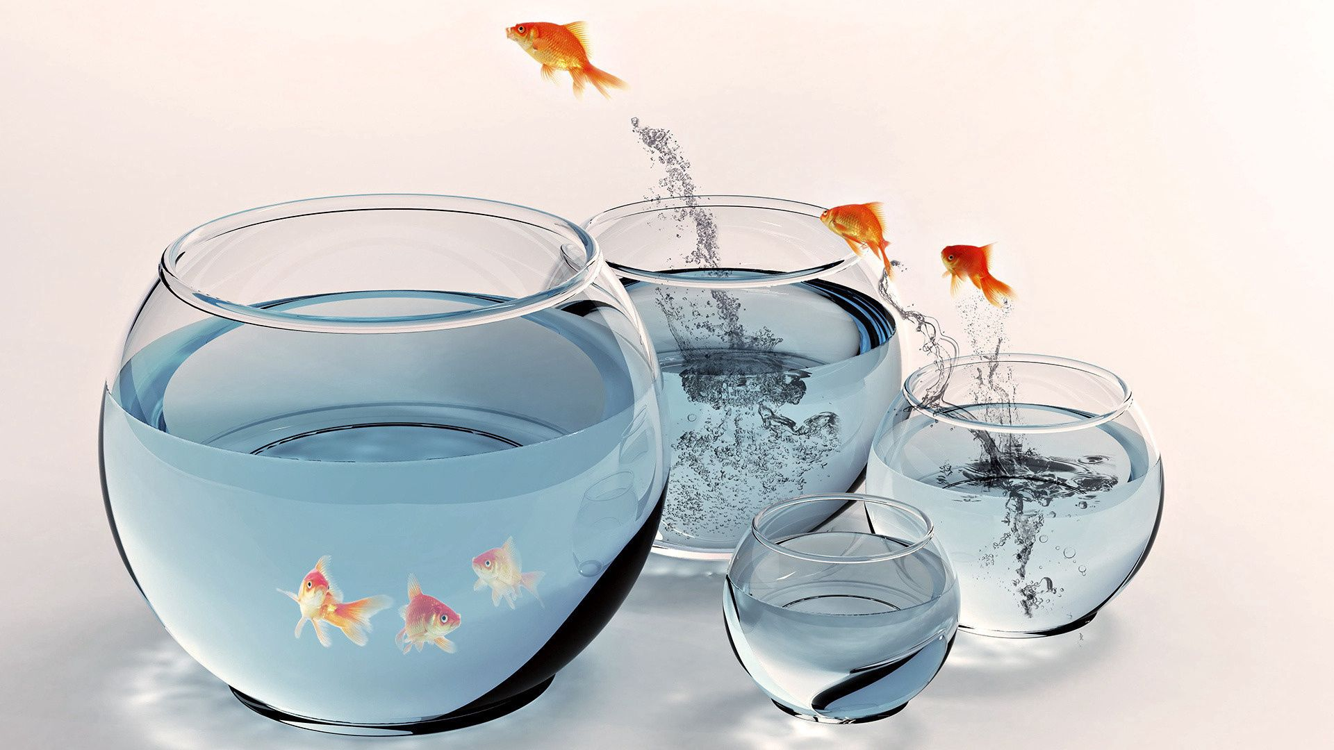 86010 Screensavers and Wallpapers Aquarium for phone. Download Animals, Water, Bounce, Jump, Aquarium, Gold Fish, Goldfish pictures for free