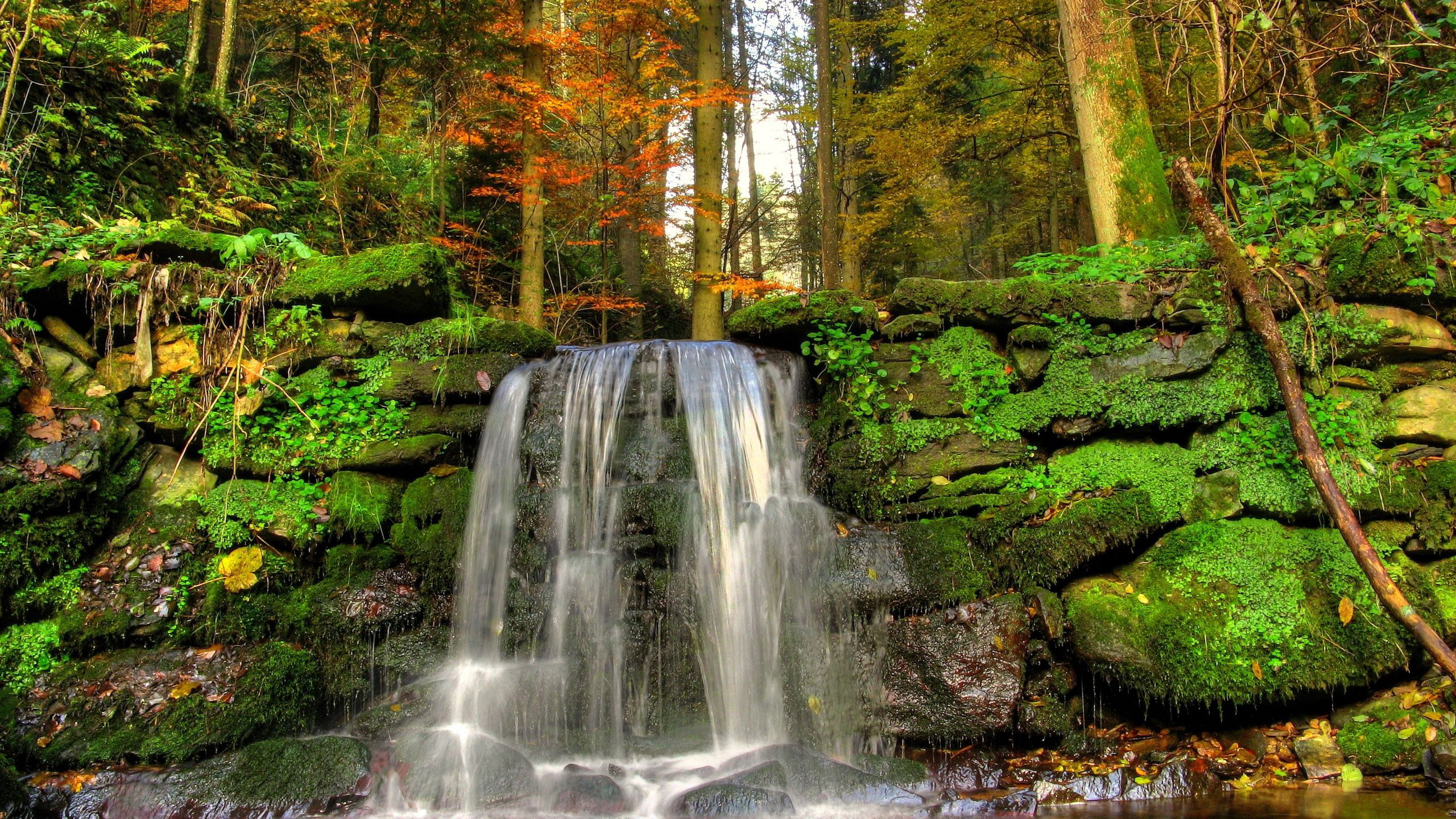 140550 download wallpaper Nature, Waterfall, Moss, Jet, Vegetation, Stones screensavers and pictures for free