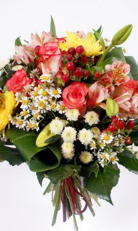 36732 télécharger le fond d'écran Plantes, Fleurs, Bouquets - économiseurs d'écran et images gratuitement
