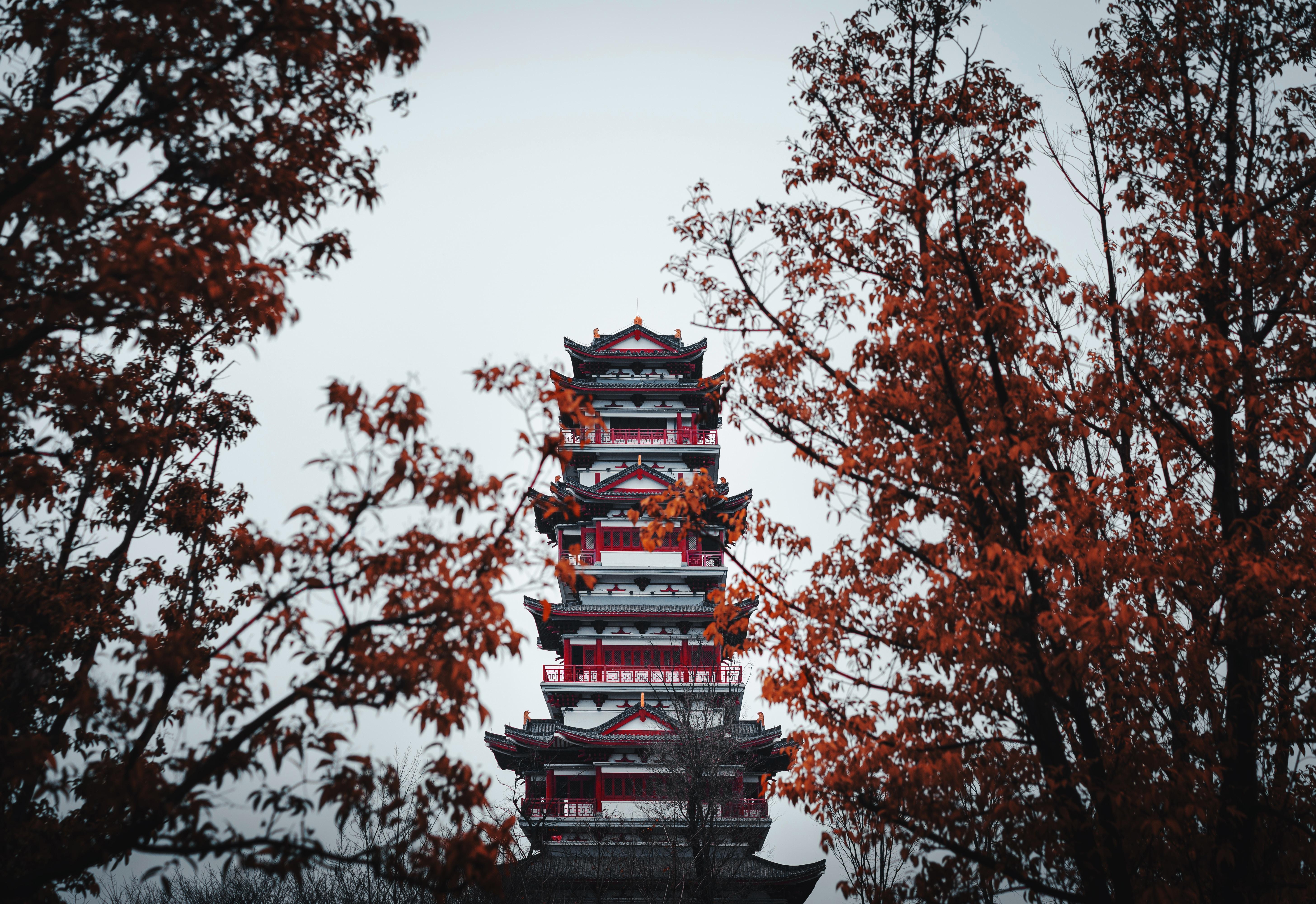 136311 免費下載壁紙 杂项, 宝塔, 建造, 建筑, 寺庙, 神殿, 树 屏保和圖片