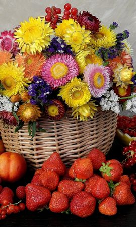 41047 télécharger le fond d'écran Plantes, Fleurs, Still Life - économiseurs d'écran et images gratuitement