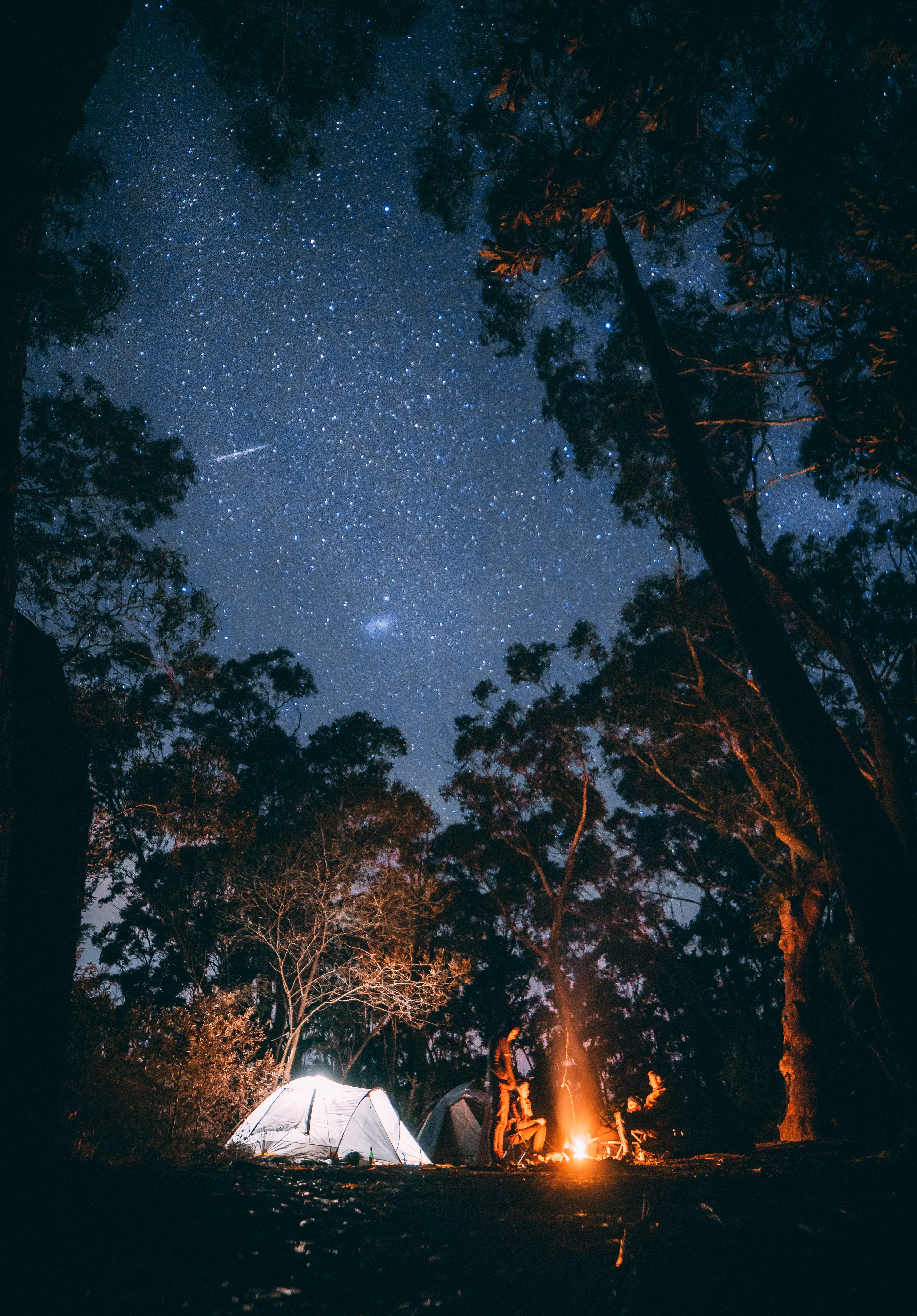 101974 Screensavers and Wallpapers Bonfire for phone. Download Nature, Trees, Bonfire, Forest, Starry Sky, Relaxation, Rest, Tent, Camping, Campsite pictures for free