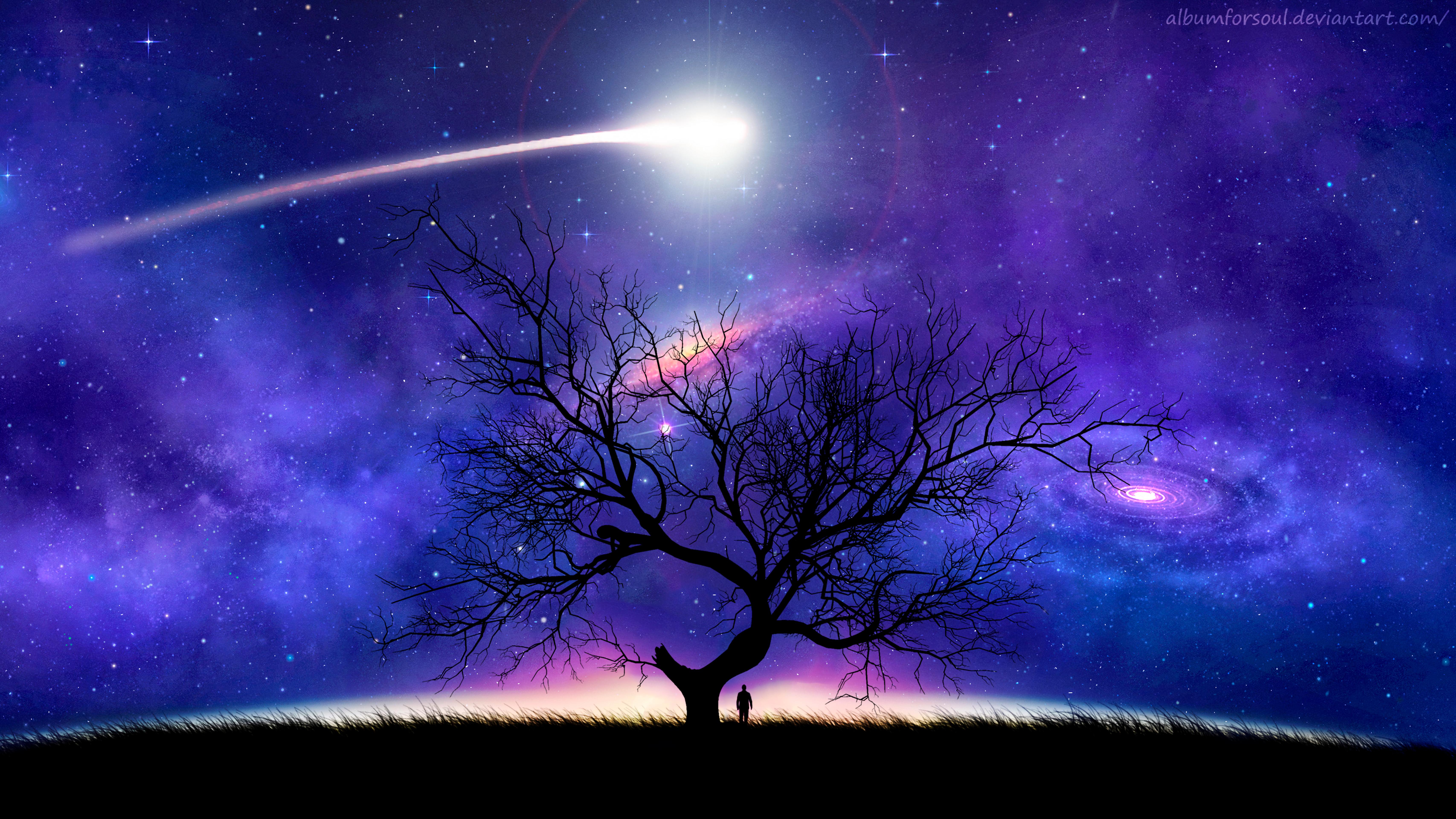 120942 скачать обои Космос, Ночь, Дерево, Арт, Силуэт, Звездное Небо, Комета - заставки и картинки бесплатно