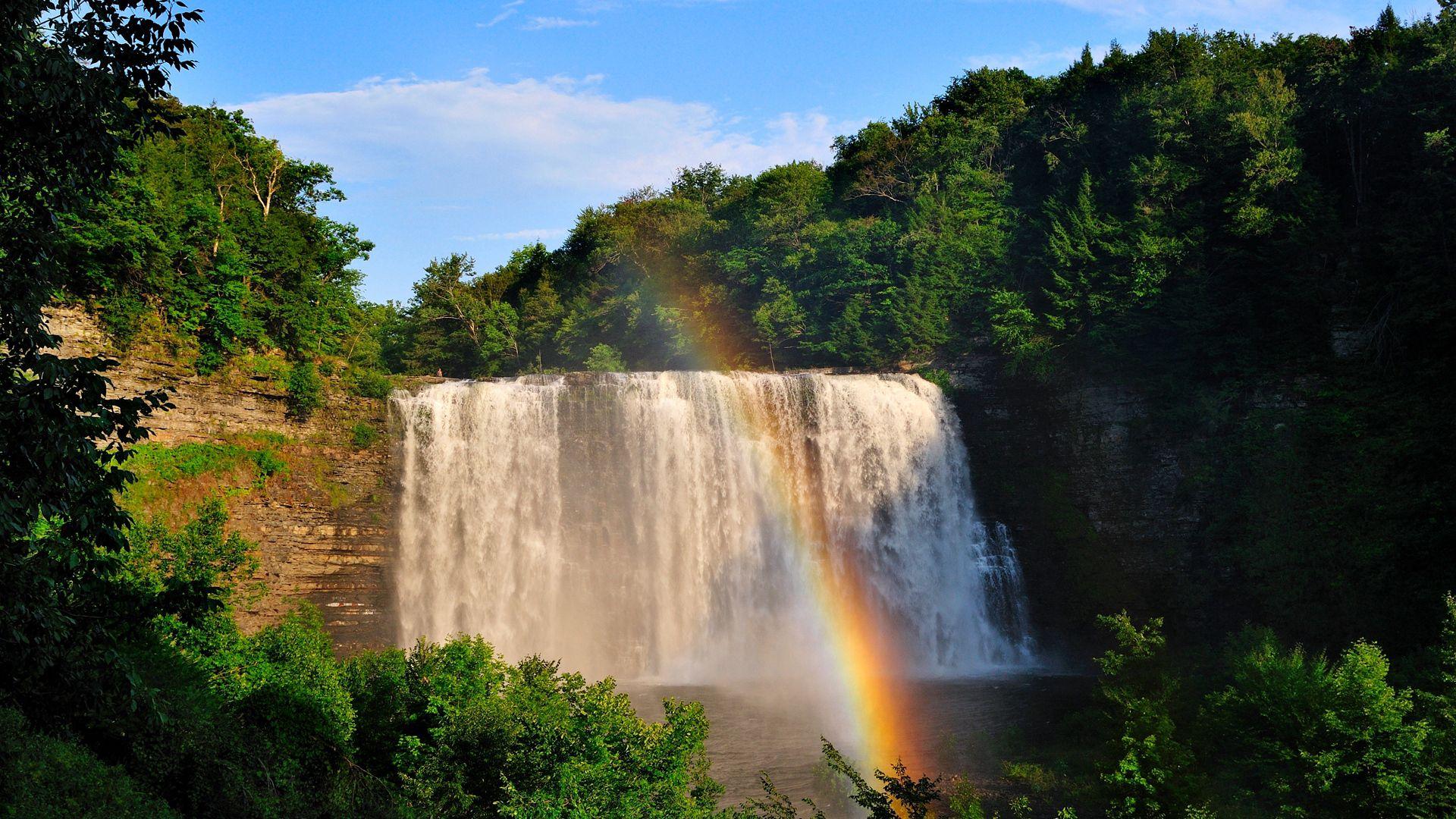 50715 скачать обои Природа, Радуга, Деревья, Водопад - заставки и картинки бесплатно