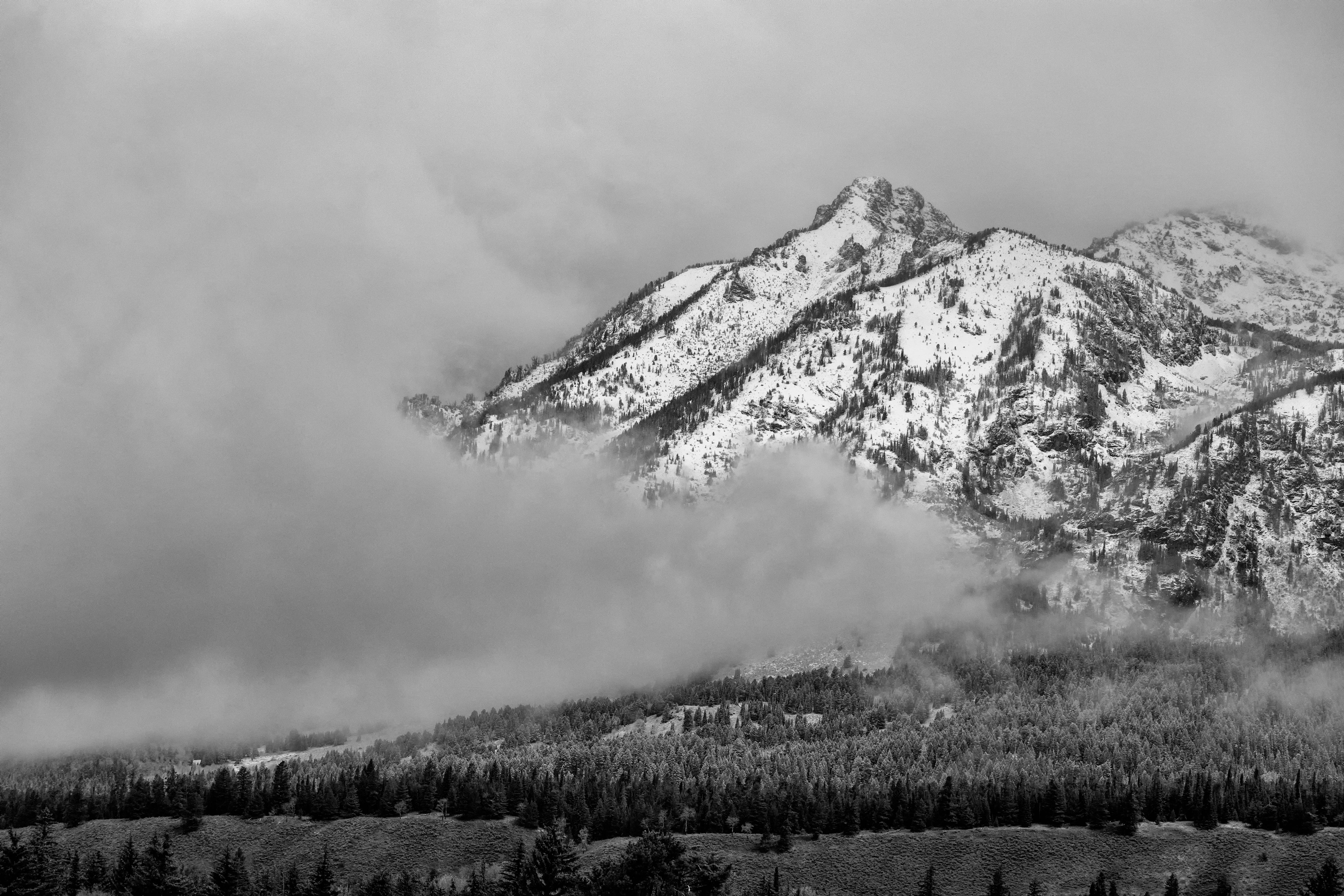 120348 免費下載壁紙 性质, 山, 戈拉, 雪, 森林, 云, 云端, 体重, 星期四, 景观 屏保和圖片