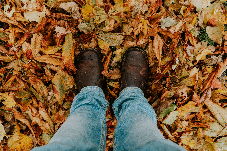 77236 скачать обои Разное, Листва, Ноги, Осень, Опавший - заставки и картинки бесплатно