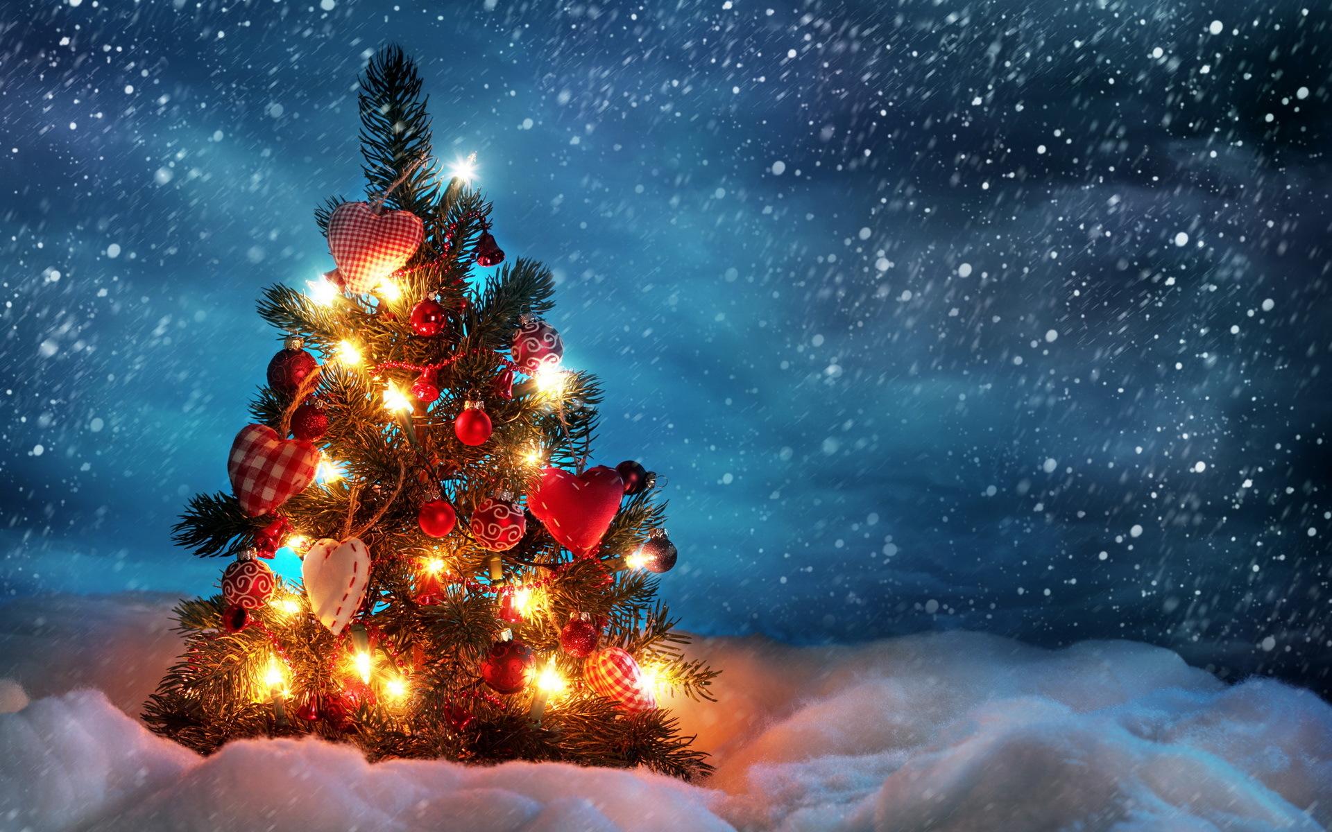 22677 télécharger le fond d'écran Fêtes, Nouvelle Année, Neige, Sapins, Noël - économiseurs d'écran et images gratuitement