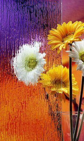 22758 скачать обои Растения, Цветы, Букеты - заставки и картинки бесплатно