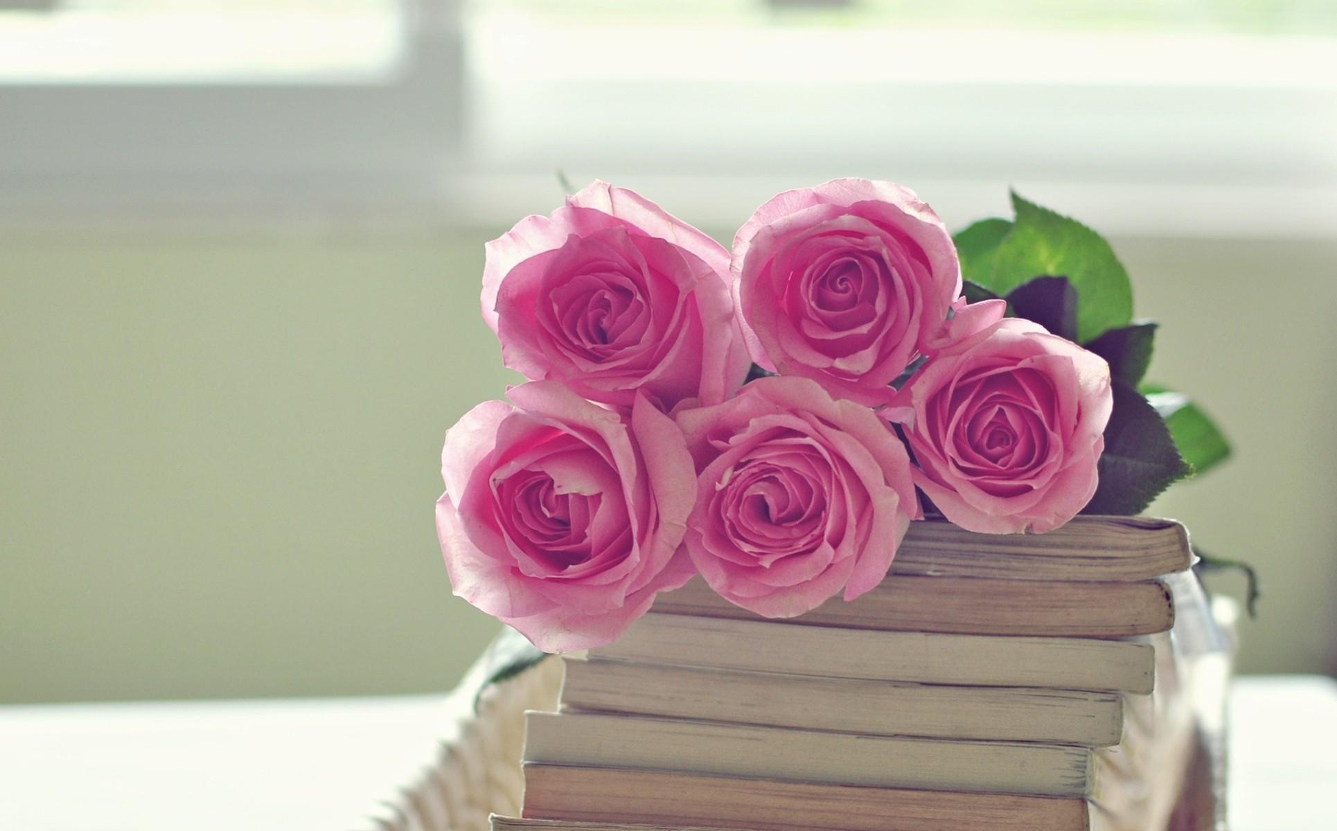 95288 скачать обои Цветы, Букет, Книги, Розы - заставки и картинки бесплатно