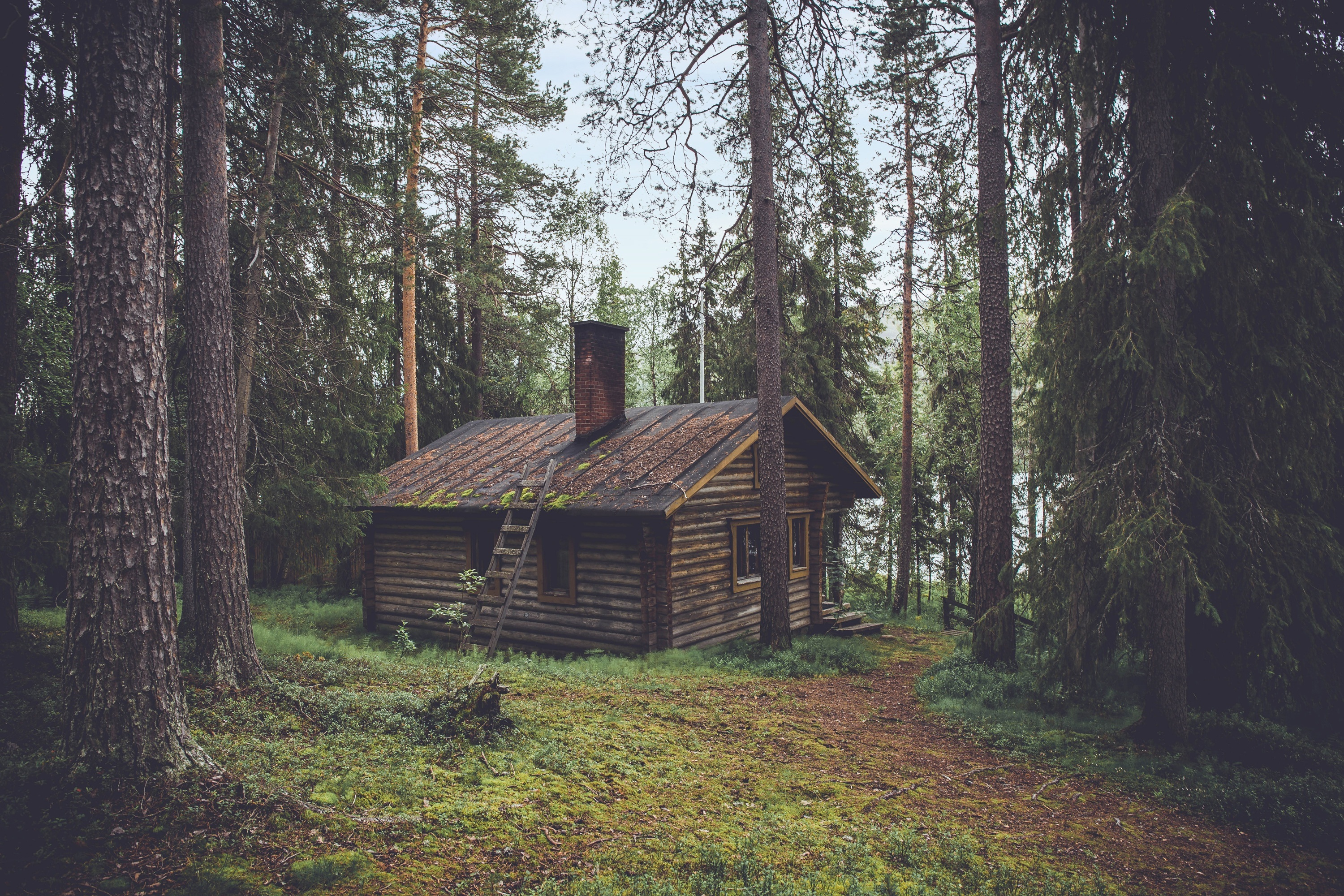 90173 Screensavers and Wallpapers Small House for phone. Download Nature, Summer, Forest, Small House, Lodge pictures for free