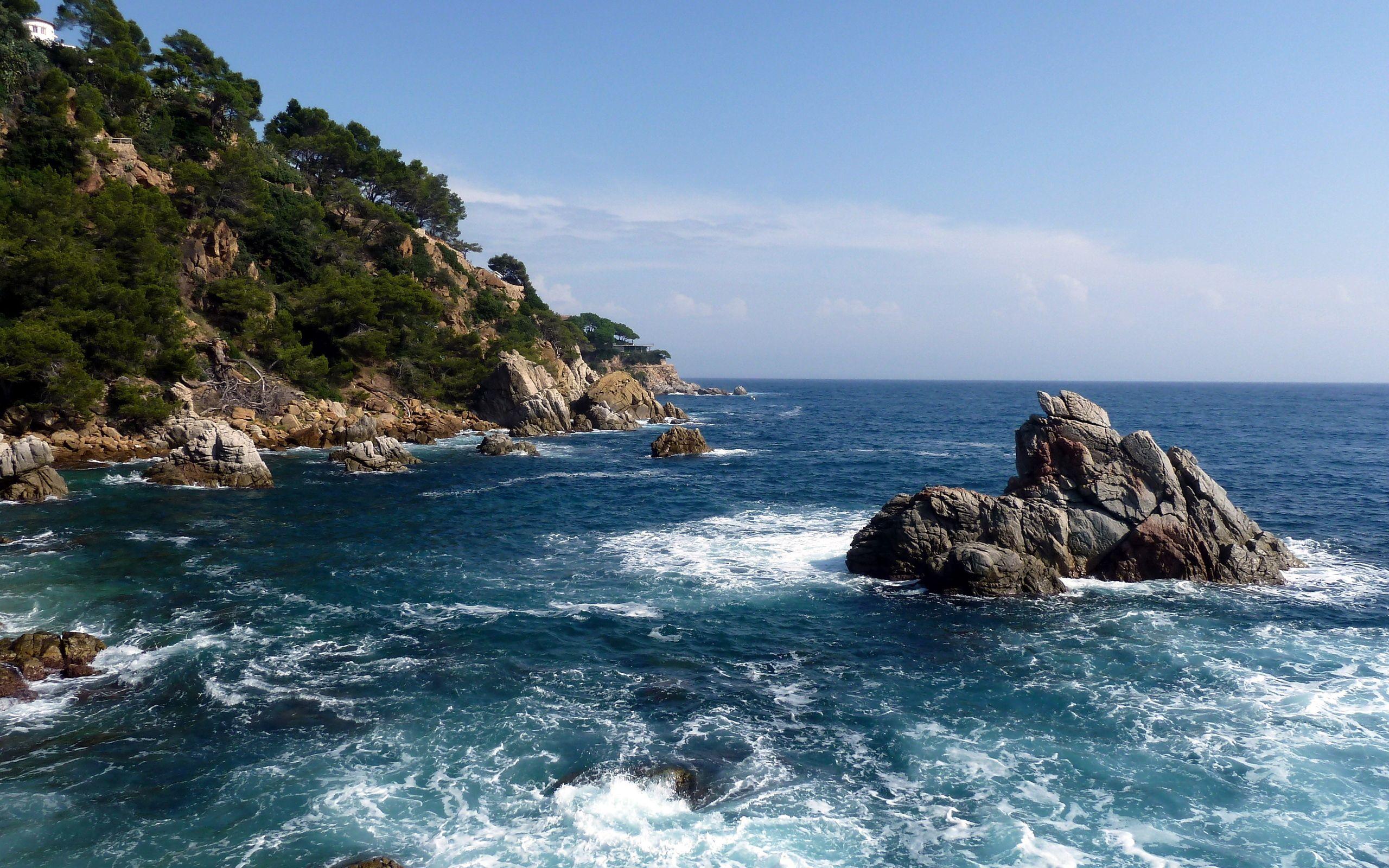 156570 скачать обои Море, Природа, Деревья, Камни, Скалы, Горизонт, Берег, Сила, Пена, Синее, Порезы - заставки и картинки бесплатно