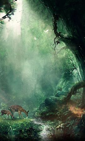 112953 descargar fondo de pantalla Selva, Jungla, Fantasía, Ciervos, Mariposas, Noche, Árboles: protectores de pantalla e imágenes gratis