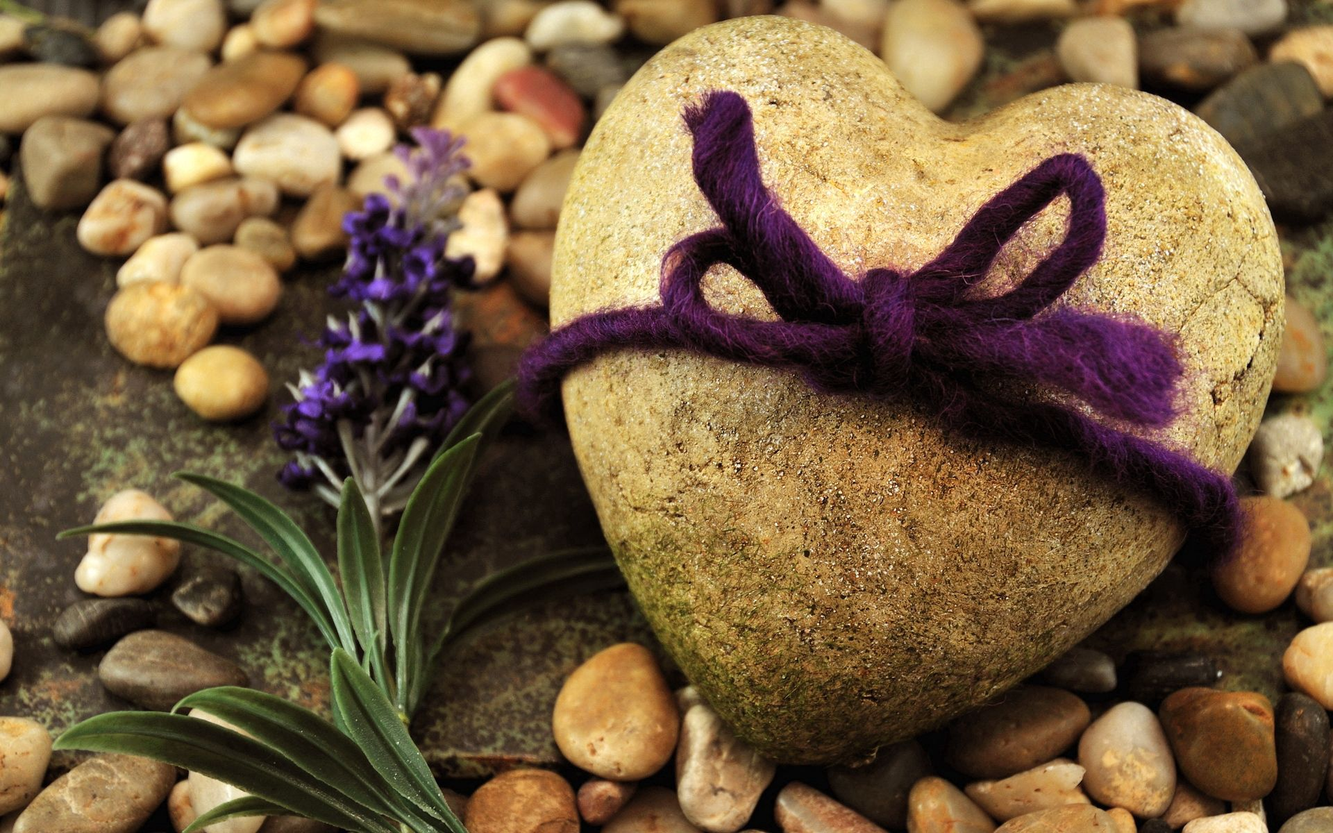 148432 download wallpaper Love, Rock, Stone, Shore, Bank, Rope, Flowers screensavers and pictures for free