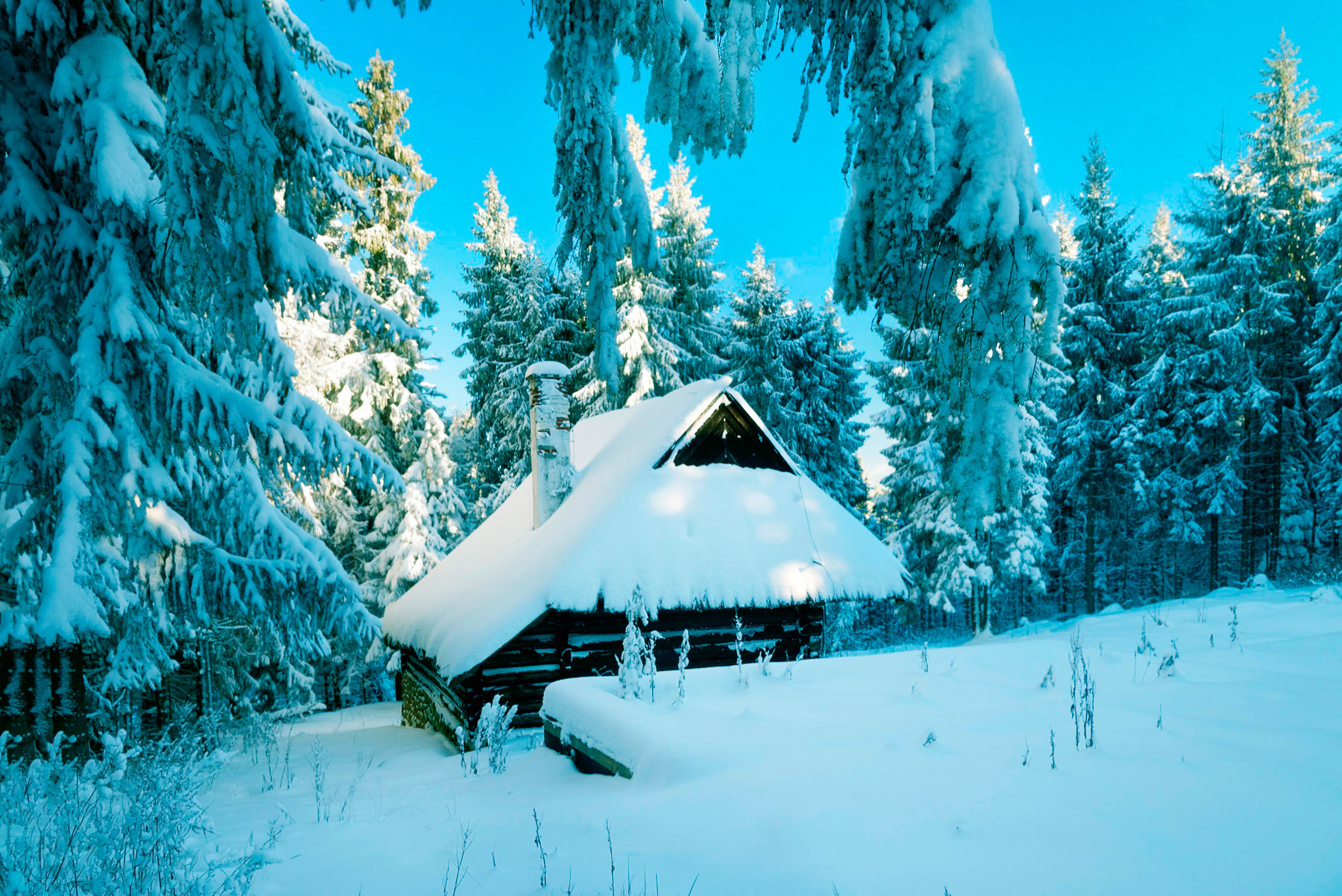 58686 download wallpaper Winter, Nature, Snow, Poland, Forest, Small House, Lodge screensavers and pictures for free