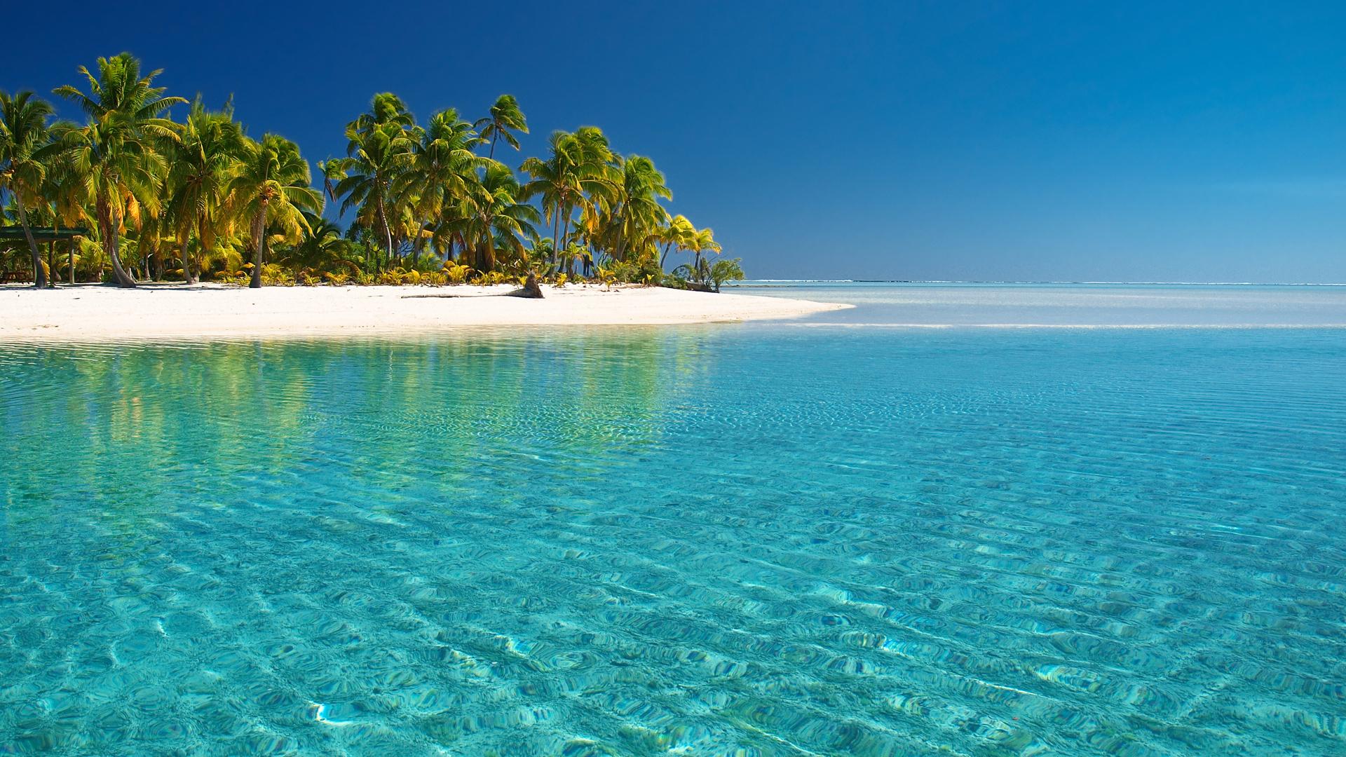 19959 скачать обои Пейзаж, Море, Пляж, Пальмы - заставки и картинки бесплатно