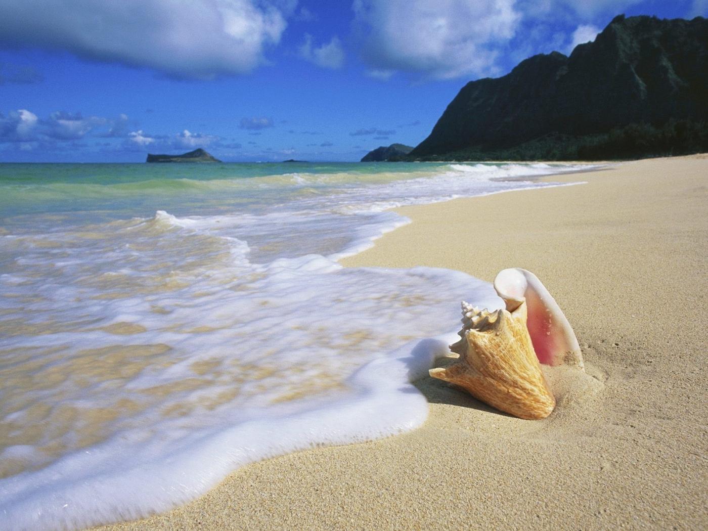 26909 免費下載壁紙 景观, 海, 海滩, 壳 屏保和圖片