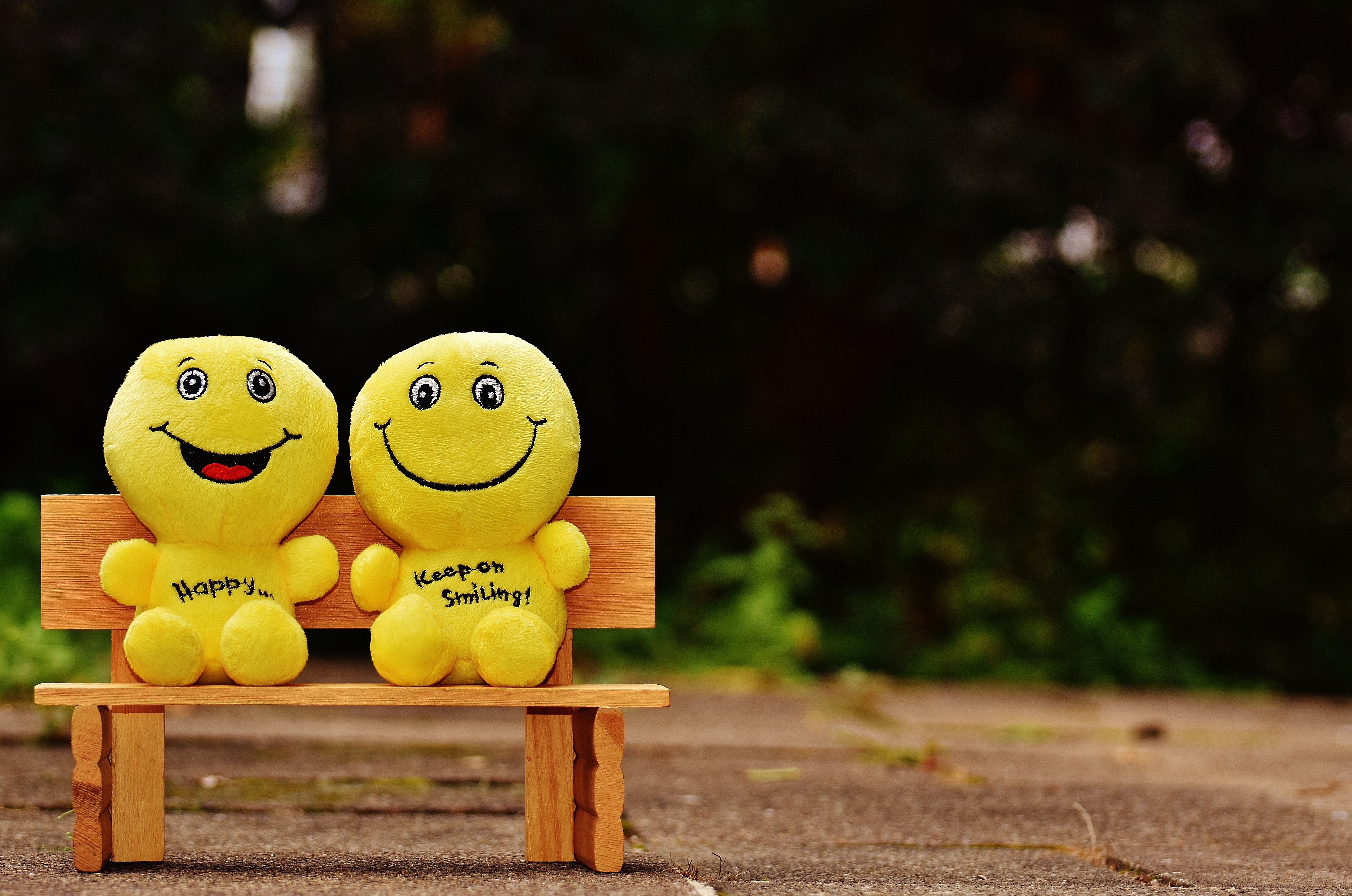 145556 download wallpaper Miscellanea, Miscellaneous, Emoticons, Smileys, Happy, Cheery, Smile, Bench, Cute screensavers and pictures for free