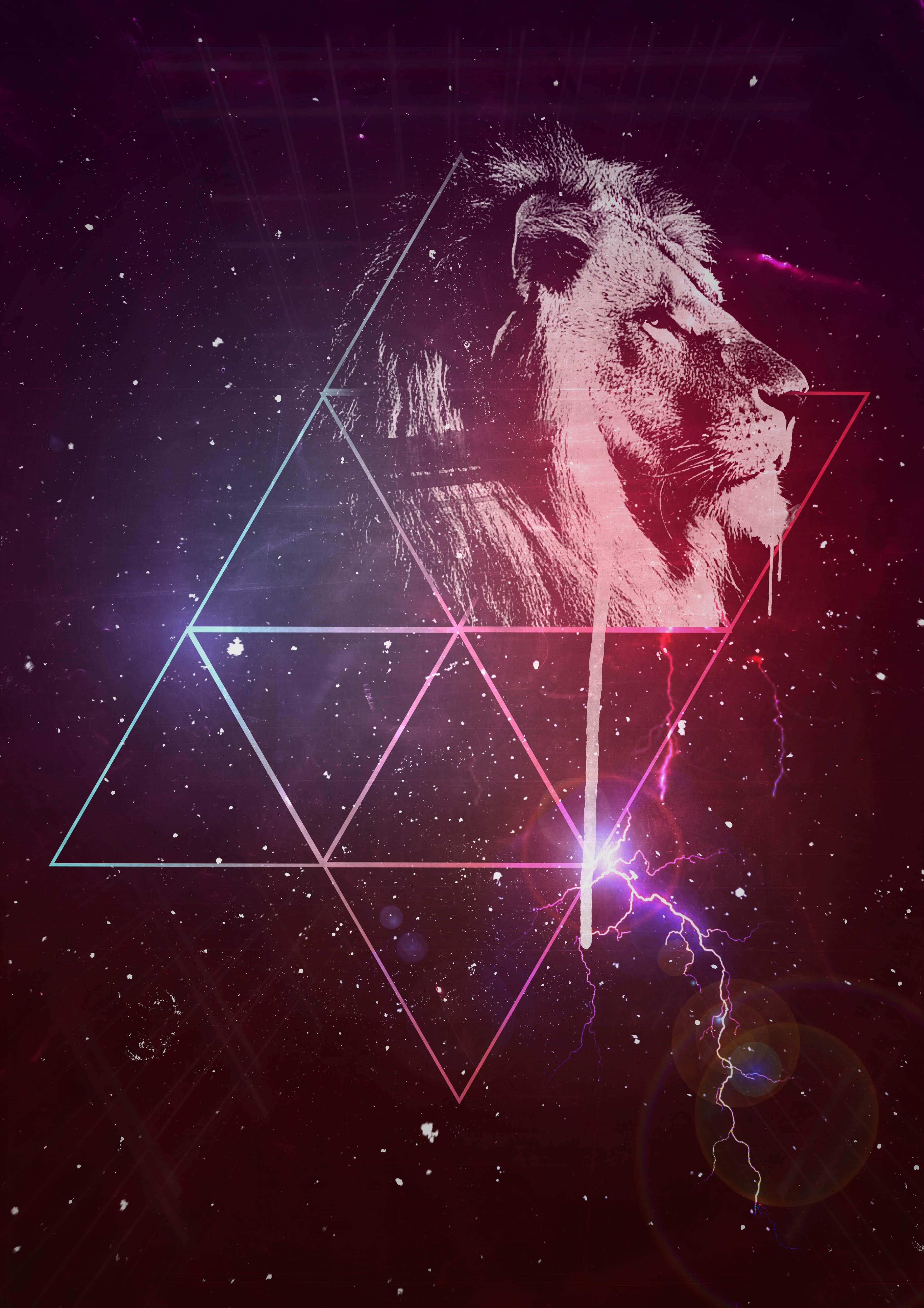 101795 Hintergrundbild herunterladen Kunst, Sternenhimmel, Ein Löwe, Löwe, Dreiecke - Bildschirmschoner und Bilder kostenlos