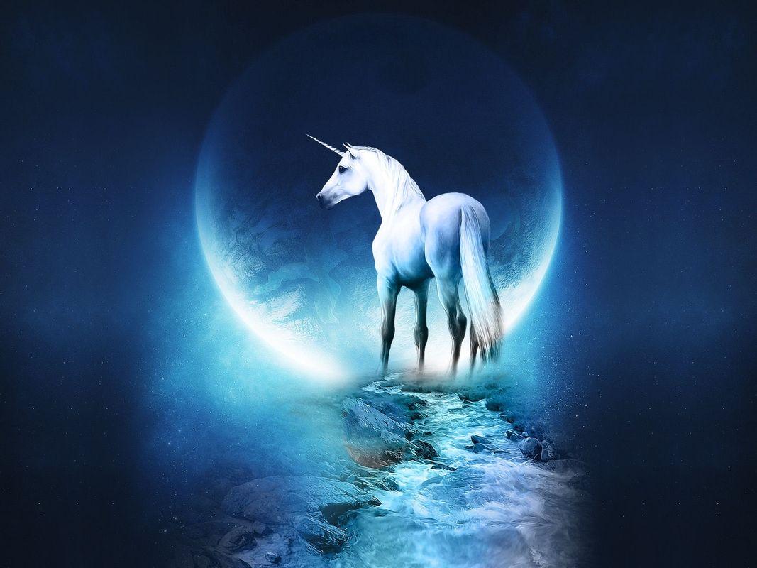 hintergrundbild für handys tiere fantasie unicorns