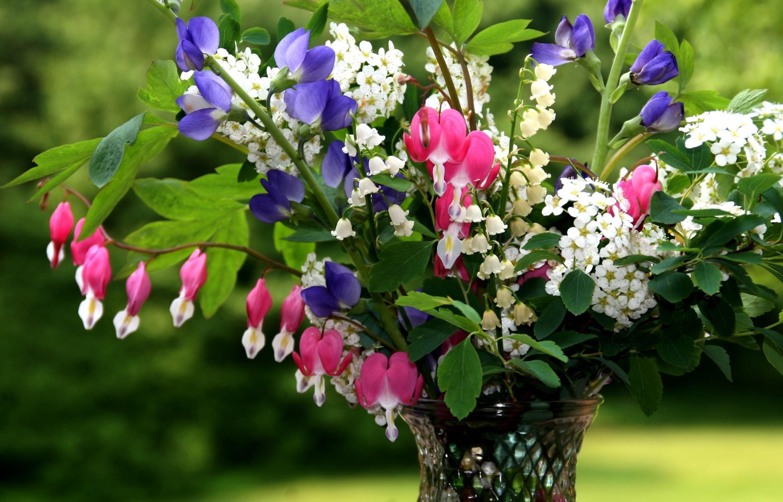 61593 Hintergrundbild herunterladen Blumen, Maiglöckchen, Nahaufnahme, Grüne, Grünen, Strauß, Bouquet, Nahansicht, Vase - Bildschirmschoner und Bilder kostenlos