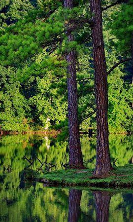 36617 скачать обои Пейзаж, Река, Деревья - заставки и картинки бесплатно