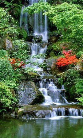 15735 скачать обои Пейзаж, Вода, Водопады - заставки и картинки бесплатно