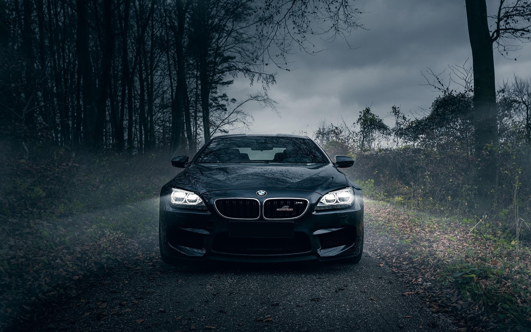 148291 скачать обои Тачки (Cars), Передний Бампер, Черный, Туман, Лес, Bmw M6 - заставки и картинки бесплатно