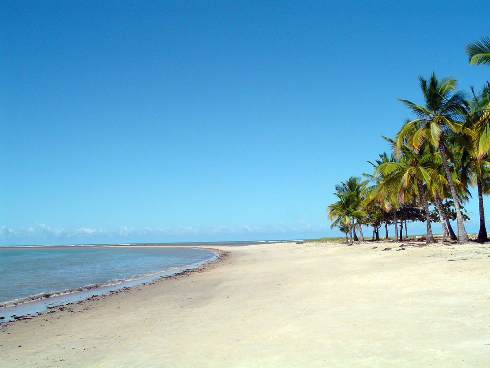 10921 скачать обои Пейзаж, Деревья, Пляж, Пальмы, Лето - заставки и картинки бесплатно