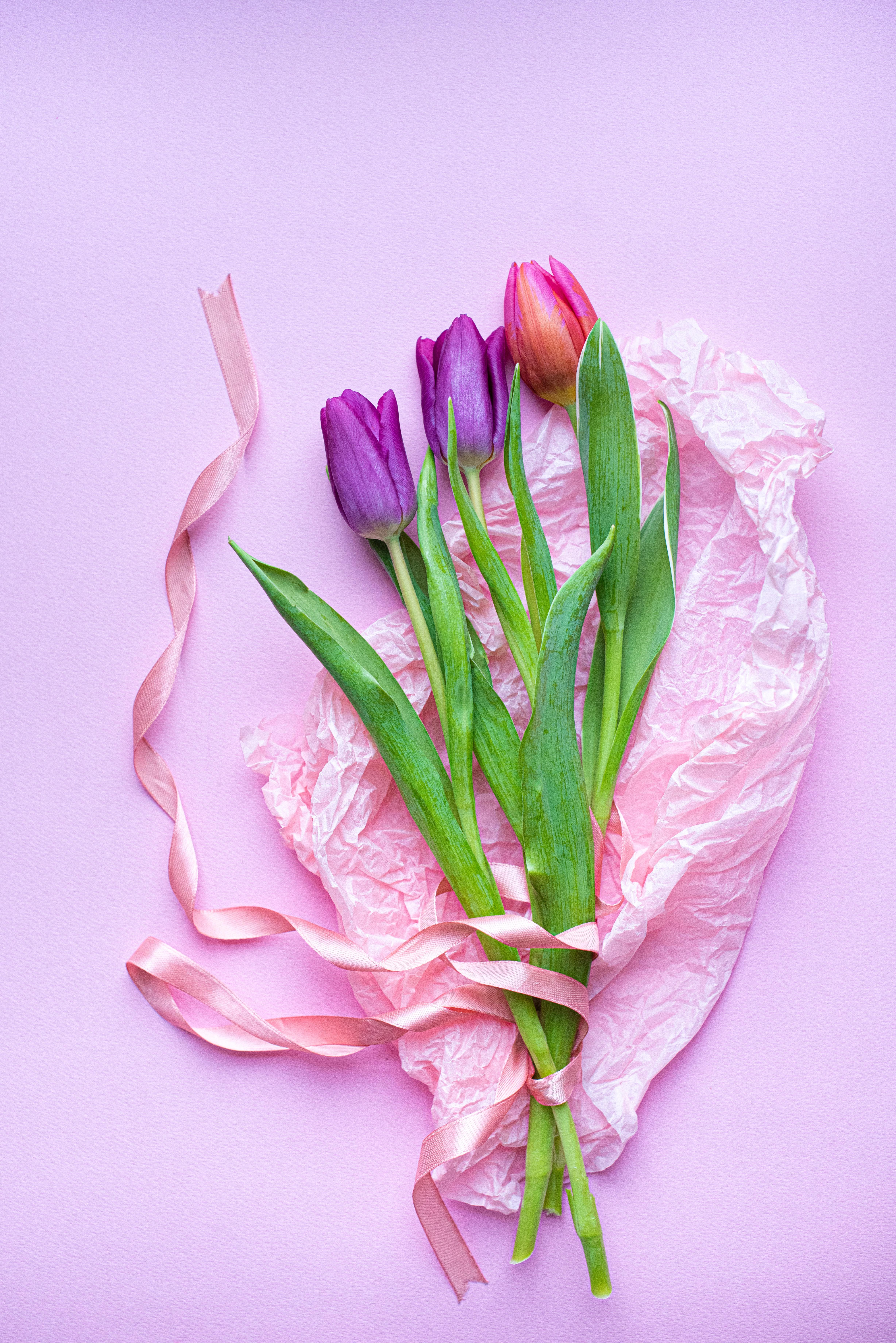 111334 Hintergrundbild herunterladen Tulpen, Blumen, Rosa, Strauß, Bouquet, Lila - Bildschirmschoner und Bilder kostenlos