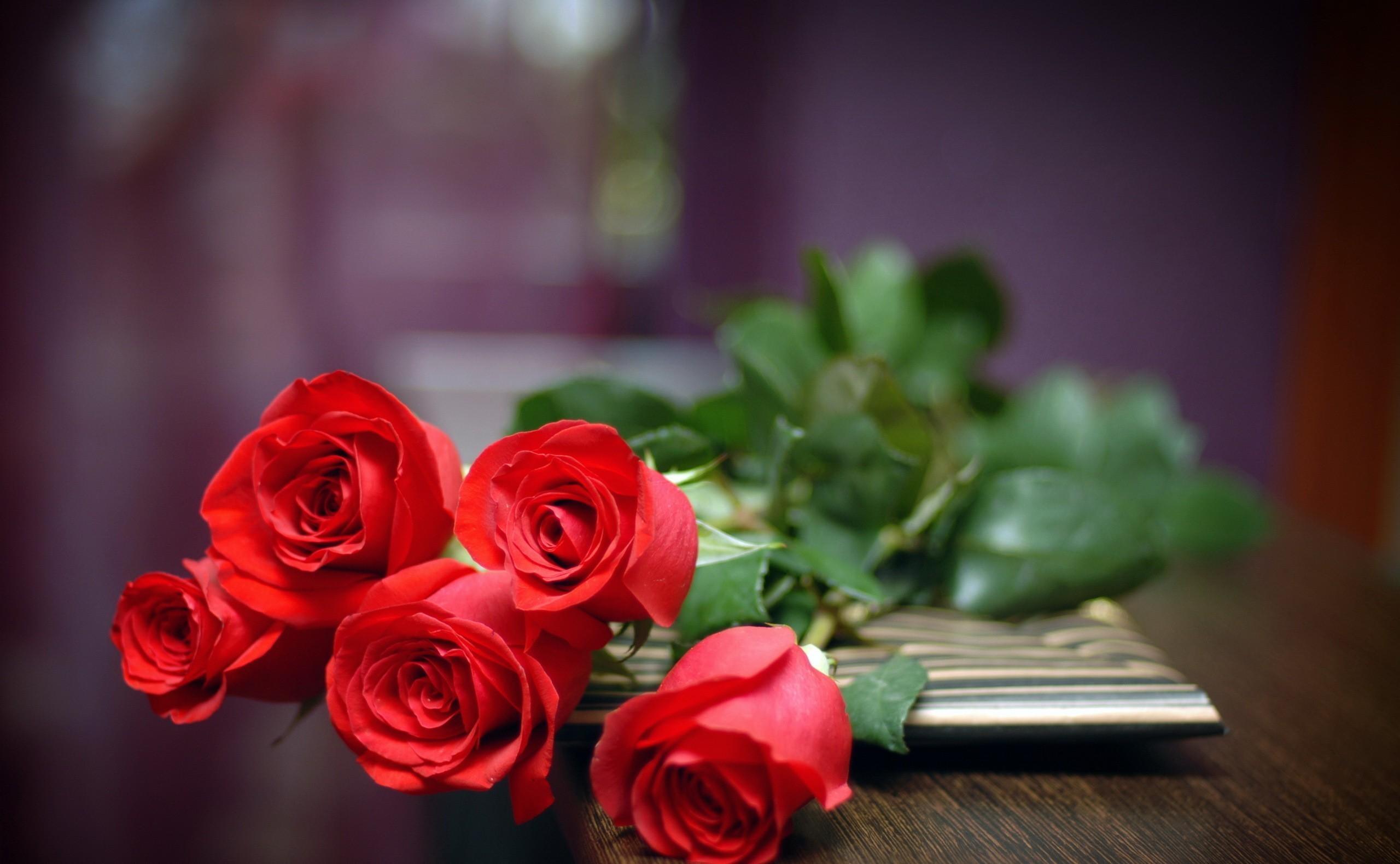 94598 скачать Красные обои на телефон бесплатно, Розы, Цветы, Лежать, Букет Красные картинки и заставки на мобильный