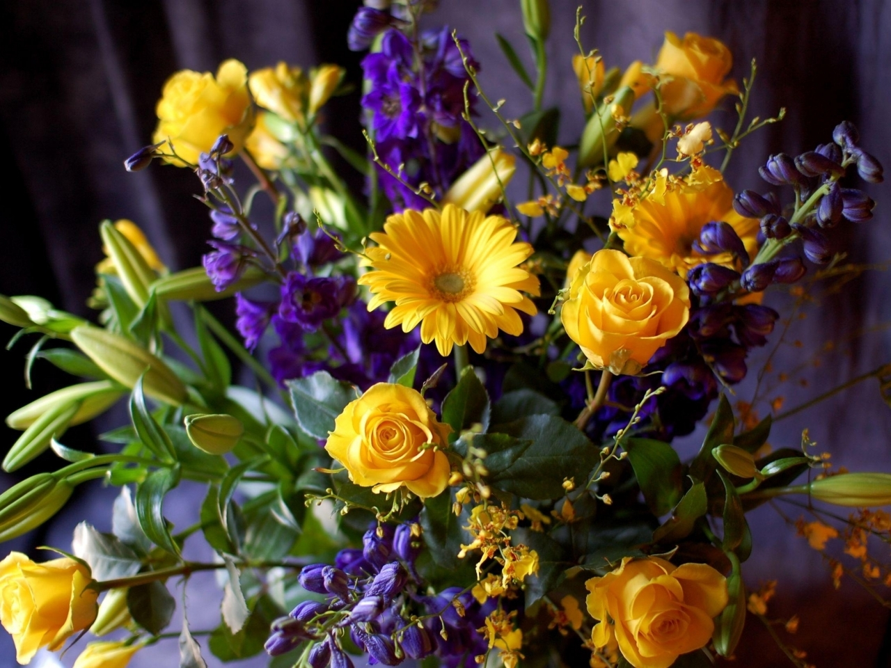 15749 descargar fondo de pantalla Plantas, Flores, Bouquets: protectores de pantalla e imágenes gratis