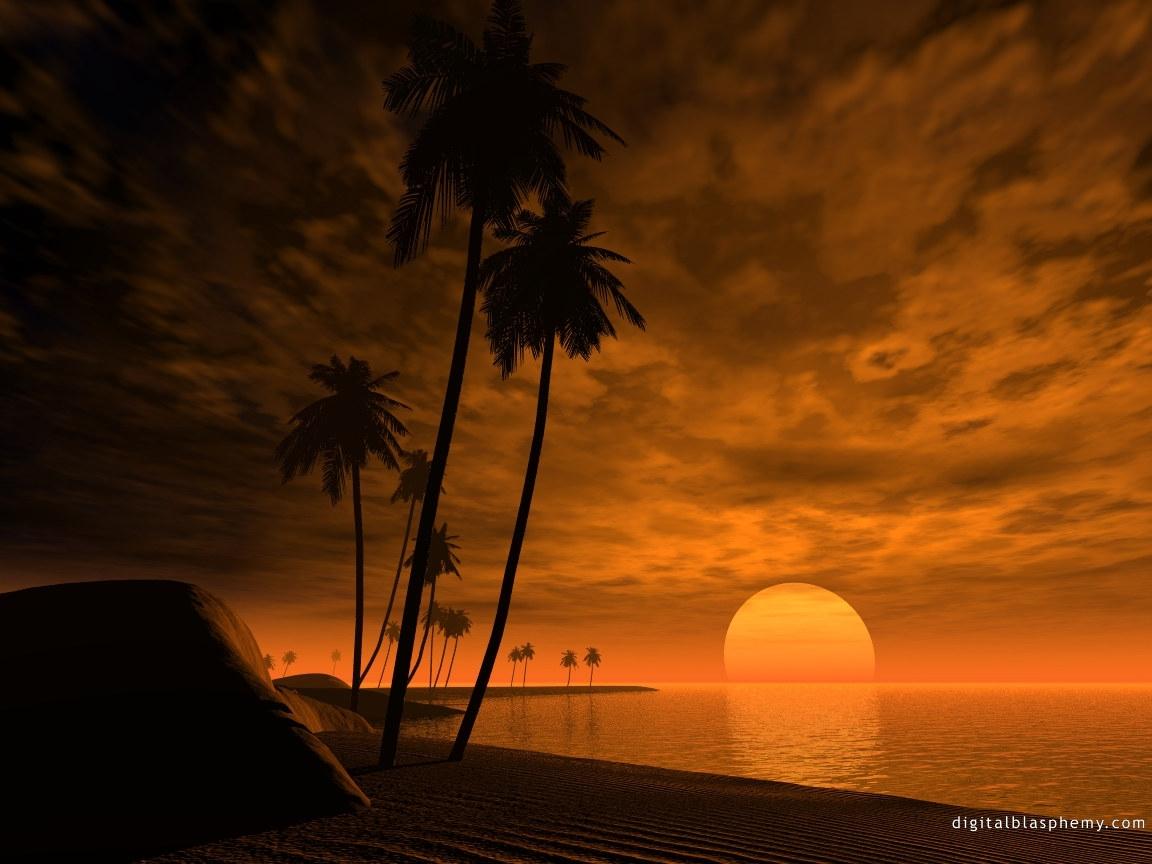 4815 скачать обои Пейзаж, Небо, Море, Солнце, Пальмы - заставки и картинки бесплатно